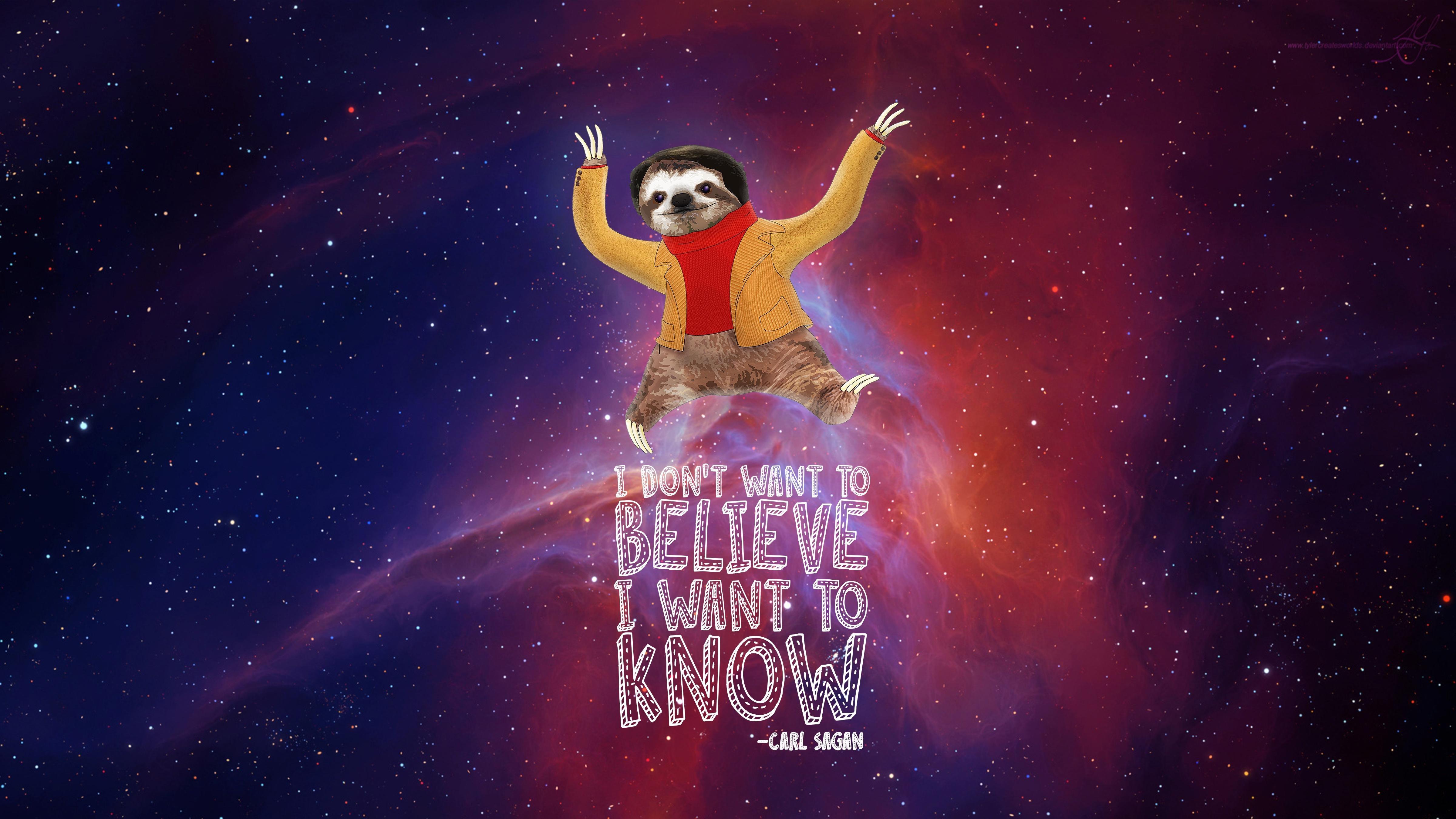 Carl Sagan Sloth 4K Wallpaper