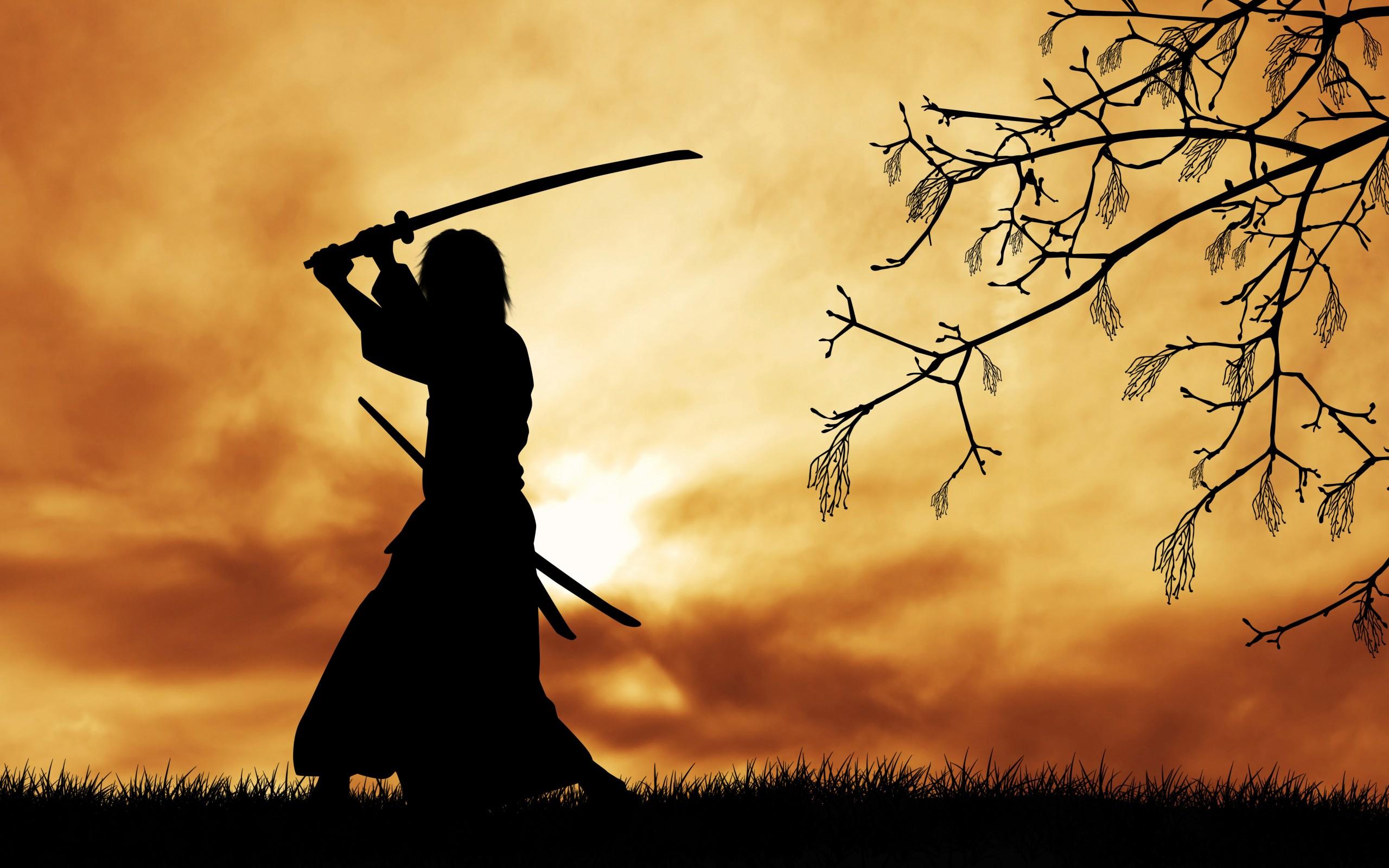 samurai wallpapers photos and desktop backgrounds up to
