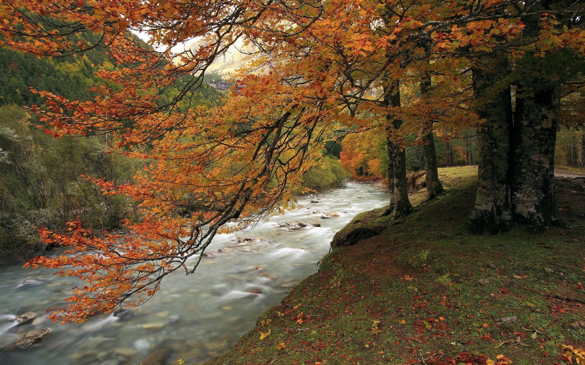 autumn nature river - photo #41
