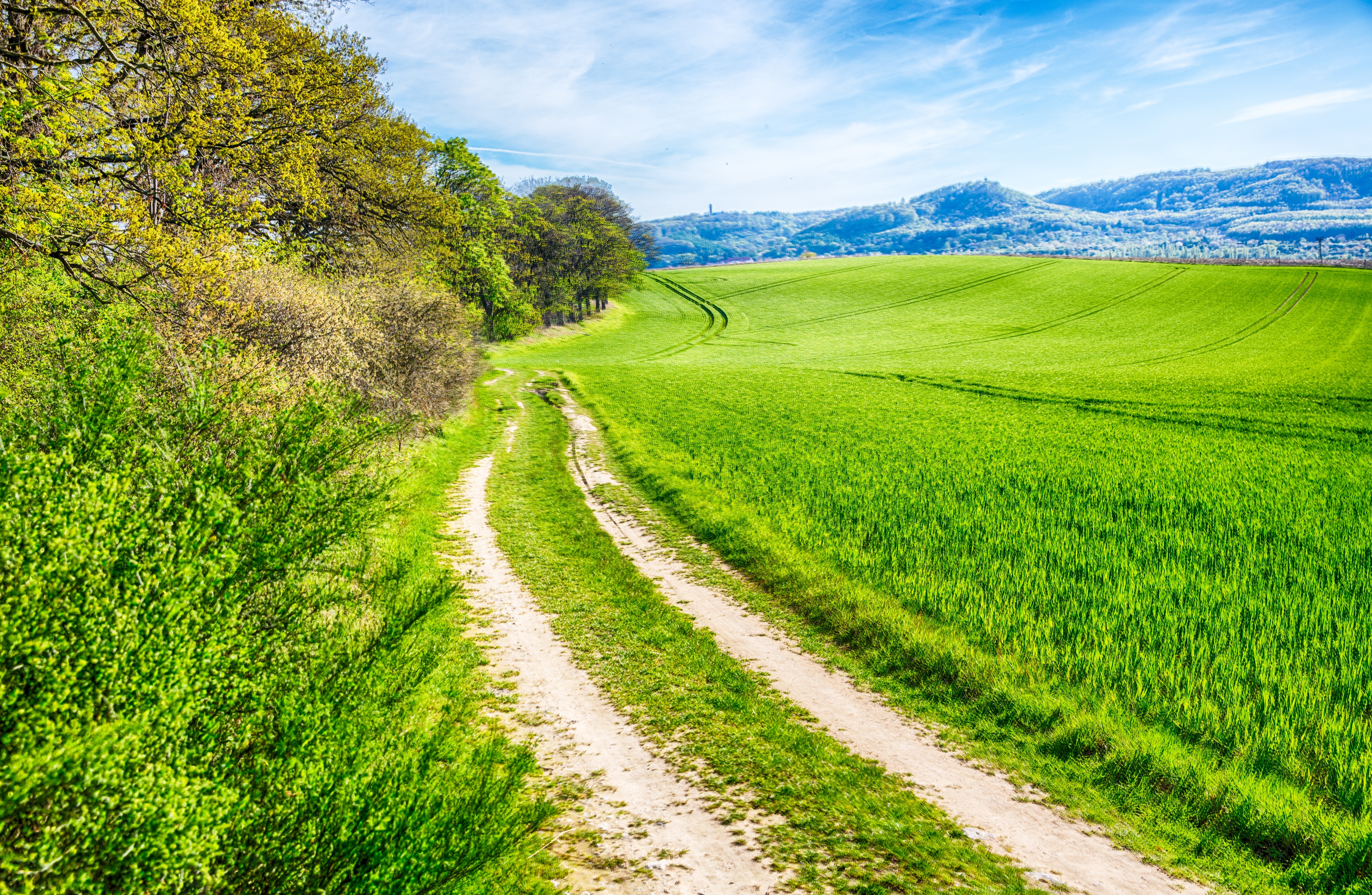 green road with blue sky 4k wallpaper