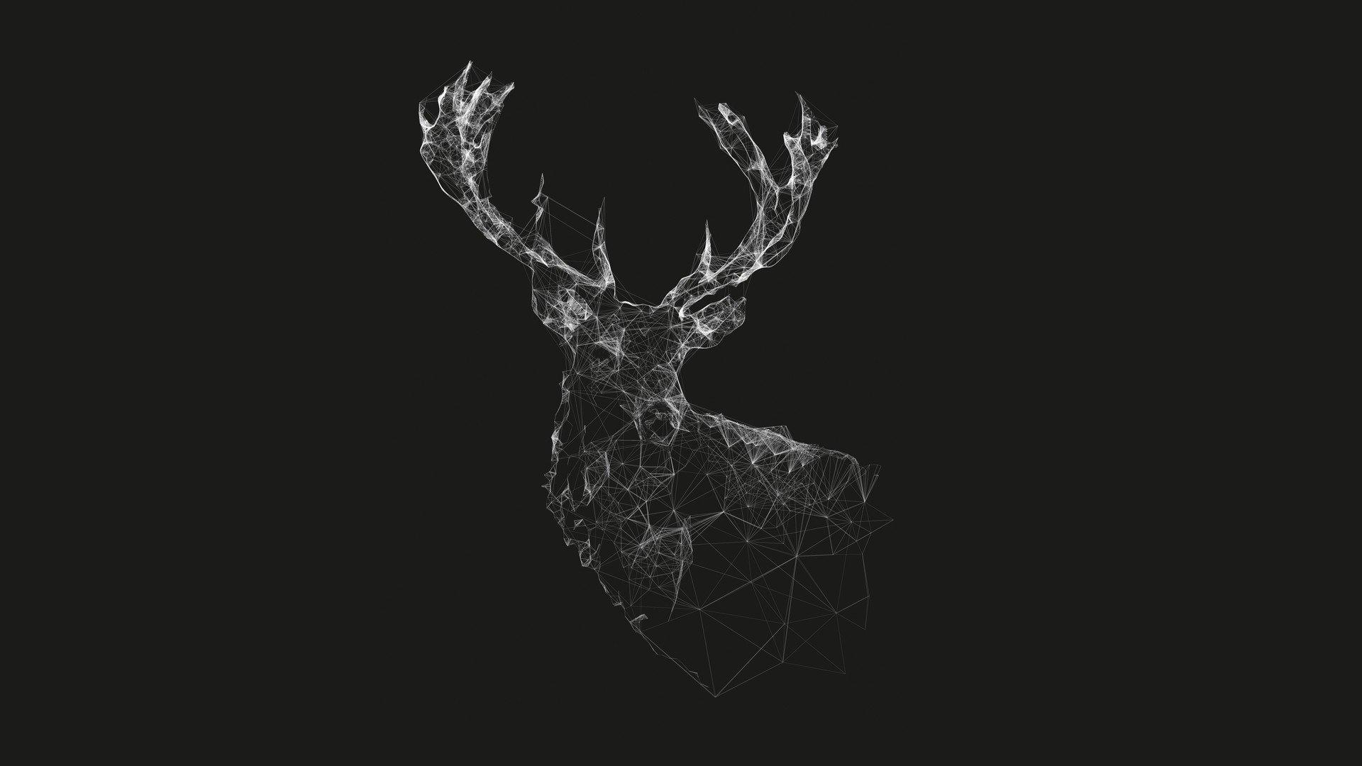 Deer wallpapers photos and desktop backgrounds up to 8k - 8k minimal wallpaper ...