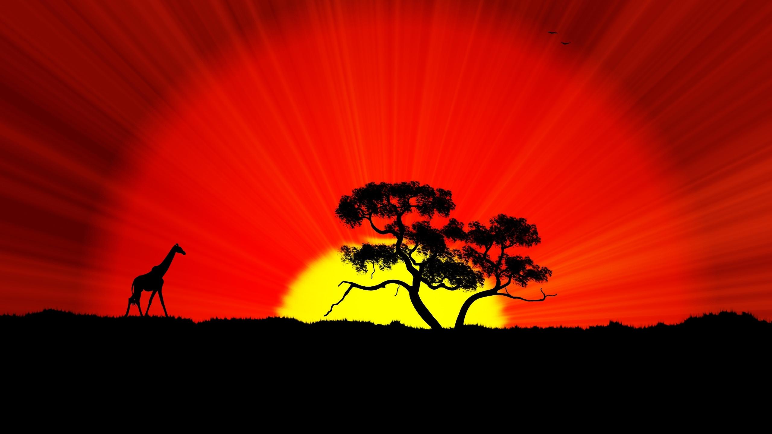 The World Africa HD wallpaper