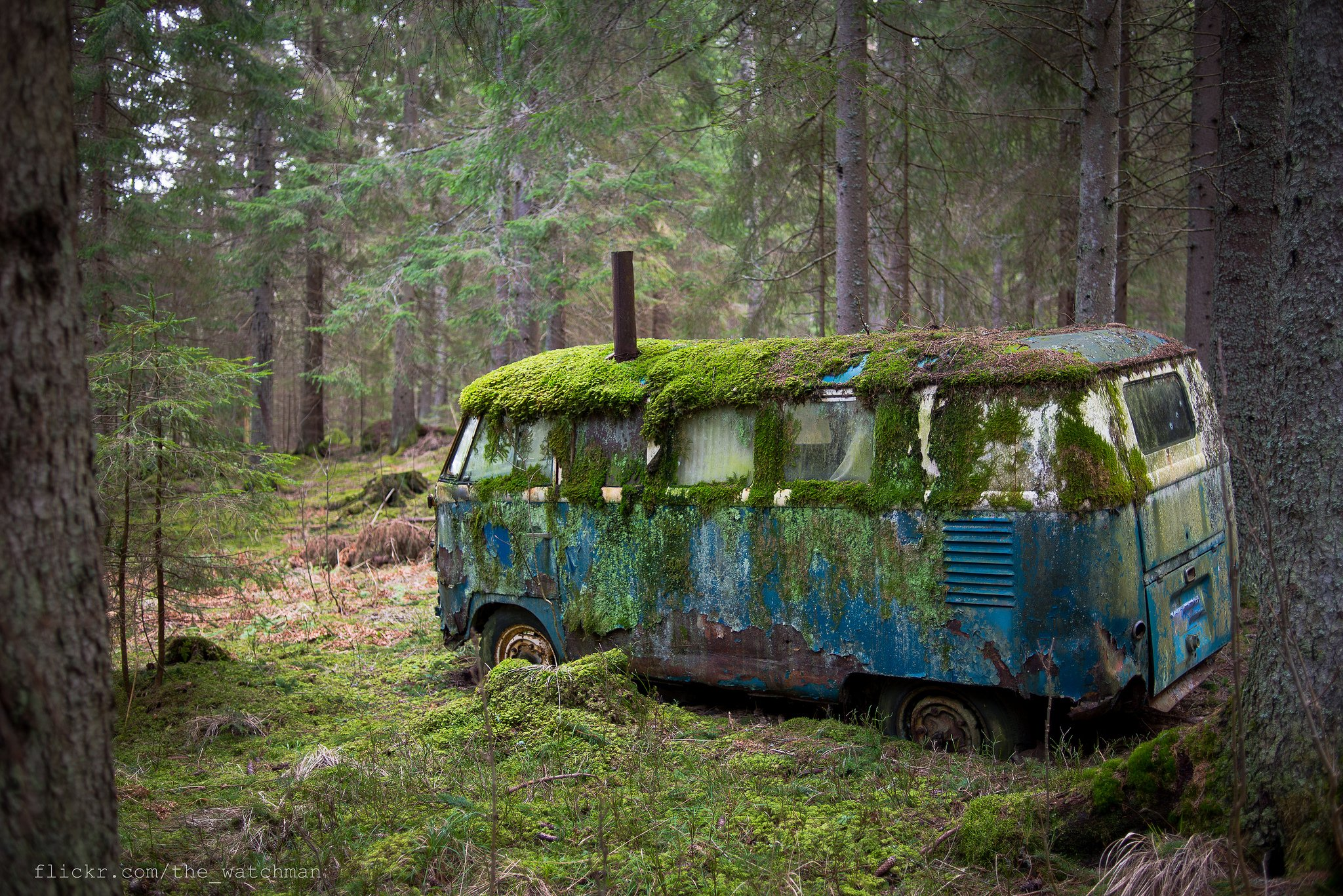 Old Mossy VW Bus That Was Once Someones Home Deep in the Forests of Norway wallpaper