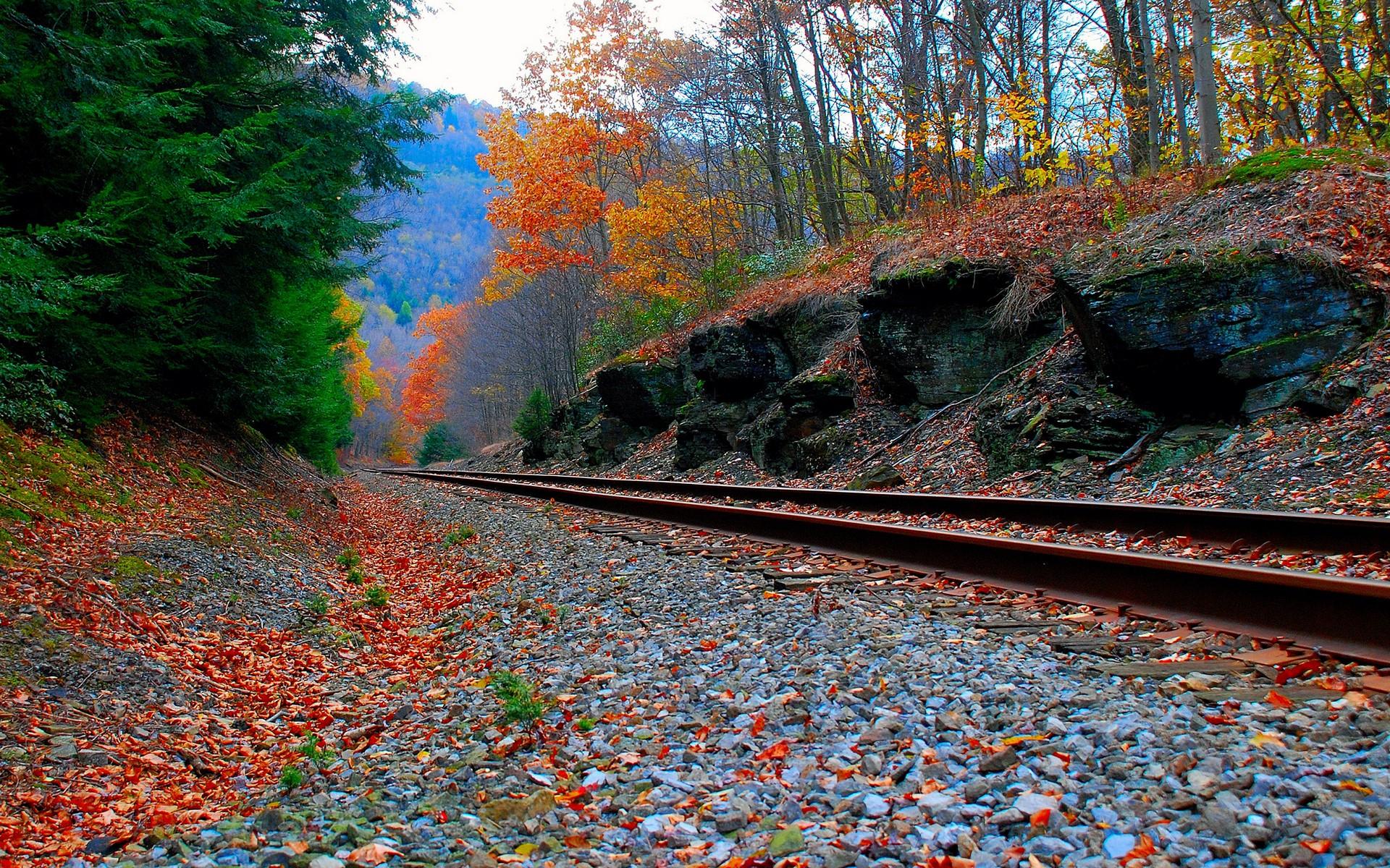 Railway wallpaper