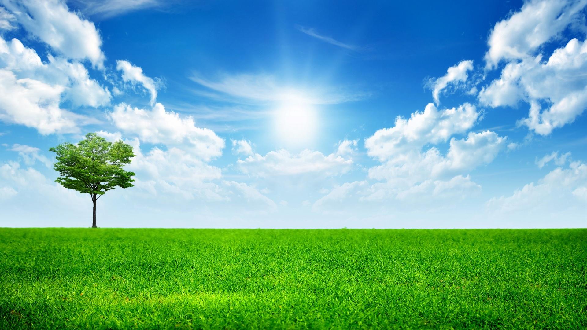 Bright Sunny Day Hd Wallpaper