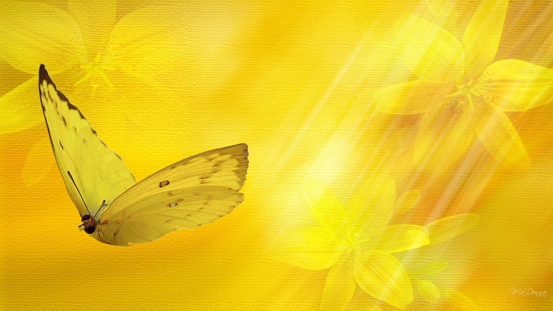 Yellow Floral Hd Wallpaper