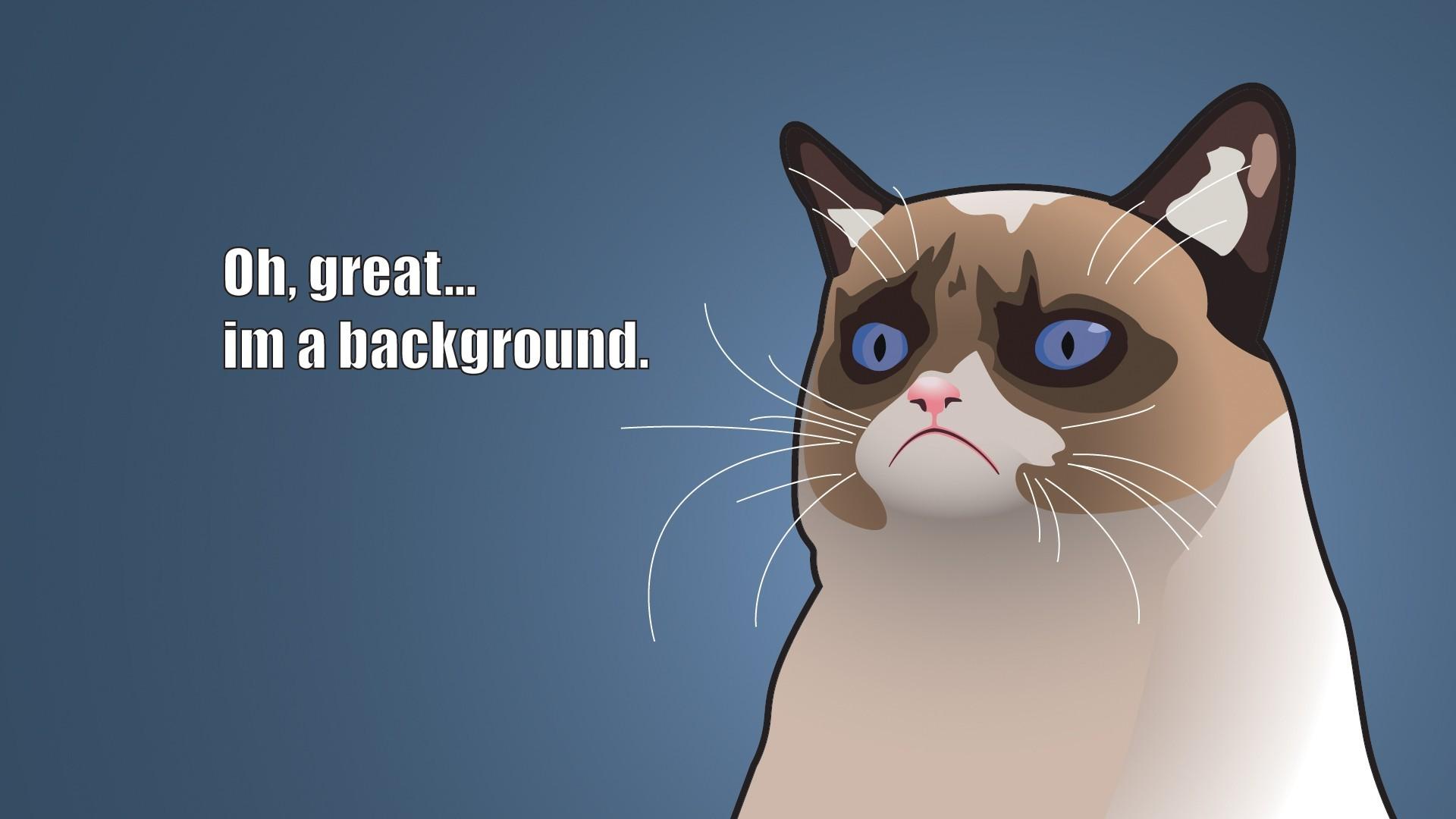 8k Animal Wallpaper Download: Cartoon Wallpapers, Photos And Desktop Backgrounds Up To