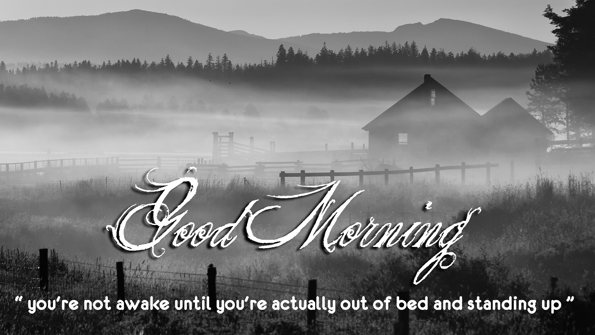 Good Morning Quotes Hd Wallpaper
