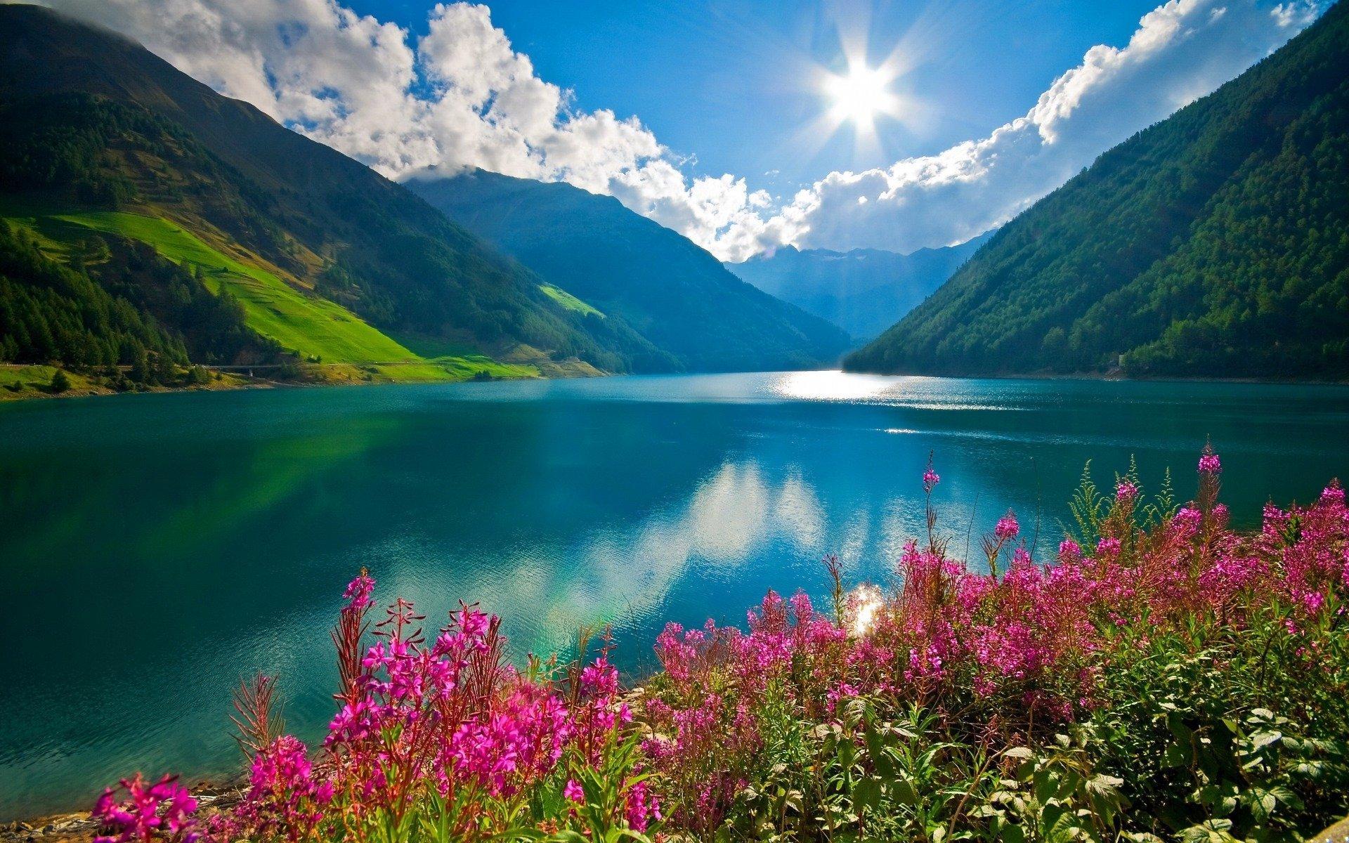 Nature Sunshine Galaxy S4 Wallpapers: Splendid Sunshine HD Wallpaper