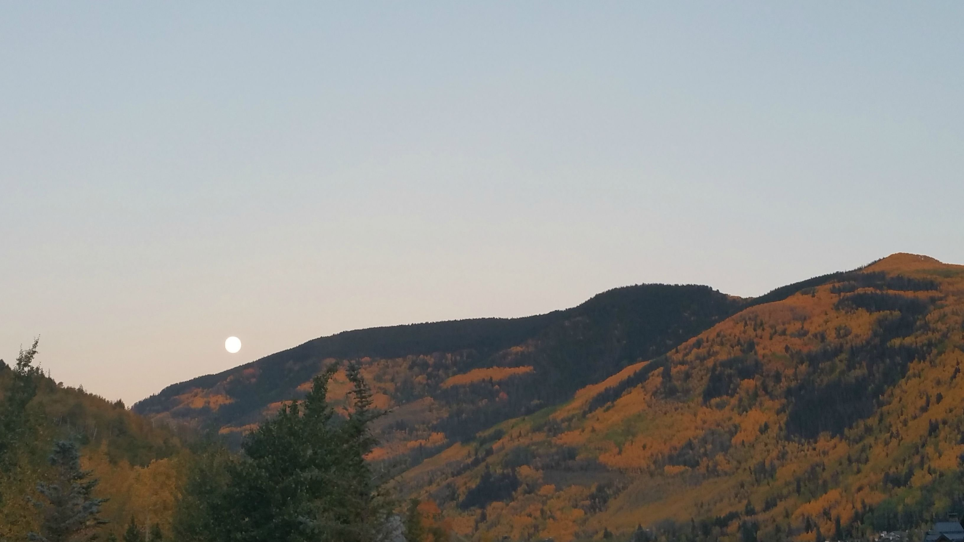 super moon rising and fall foliage in vail co hd wallpaper