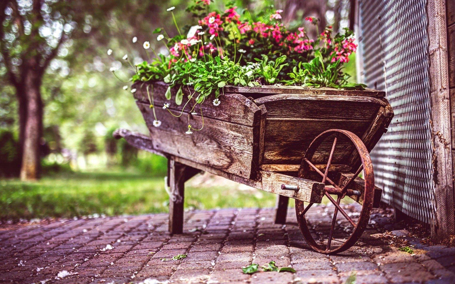 Vintage Flower Pot 88
