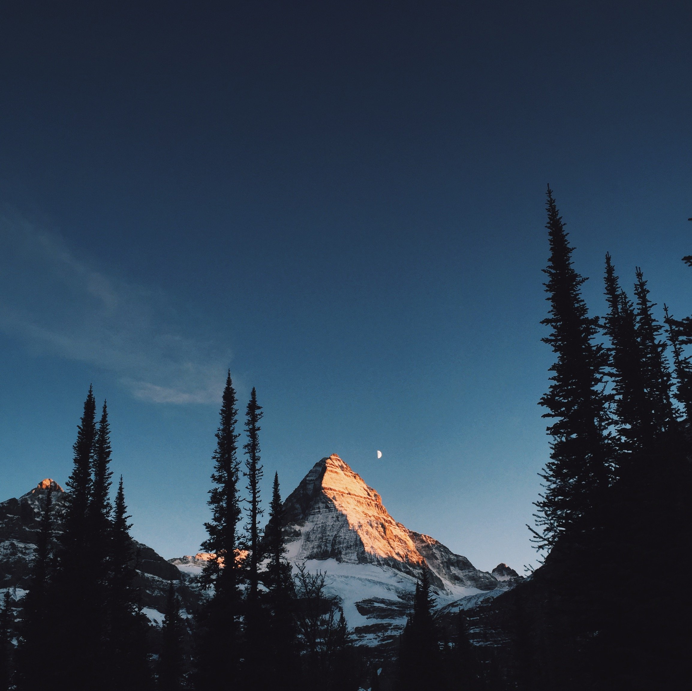 Mount Hd Wallpaper: Alpenglow On Mount Assiniboine BC HD Wallpaper