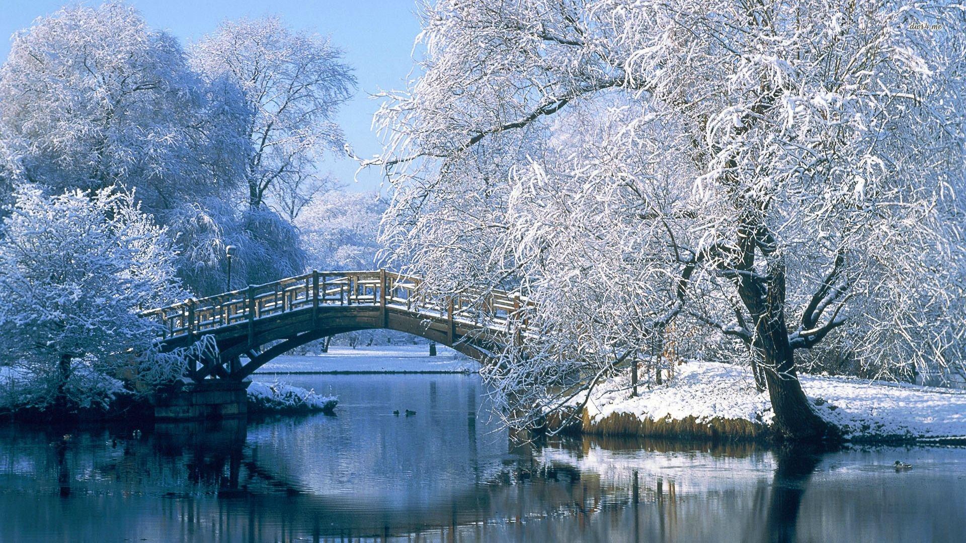 Winter Landscape 15400 Hd Wallpaper