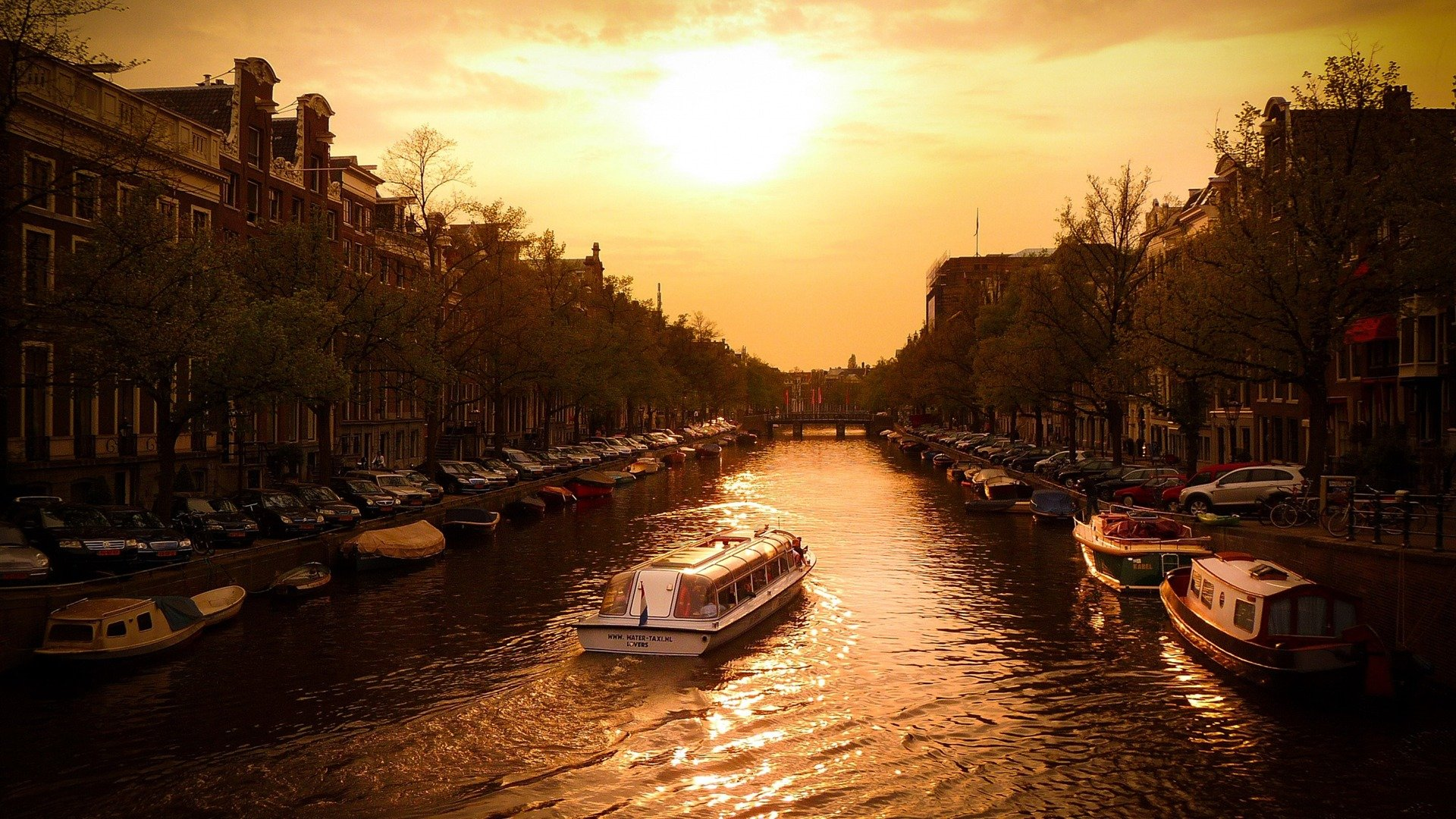 Canal Cruise Amsterdam wallpaper
