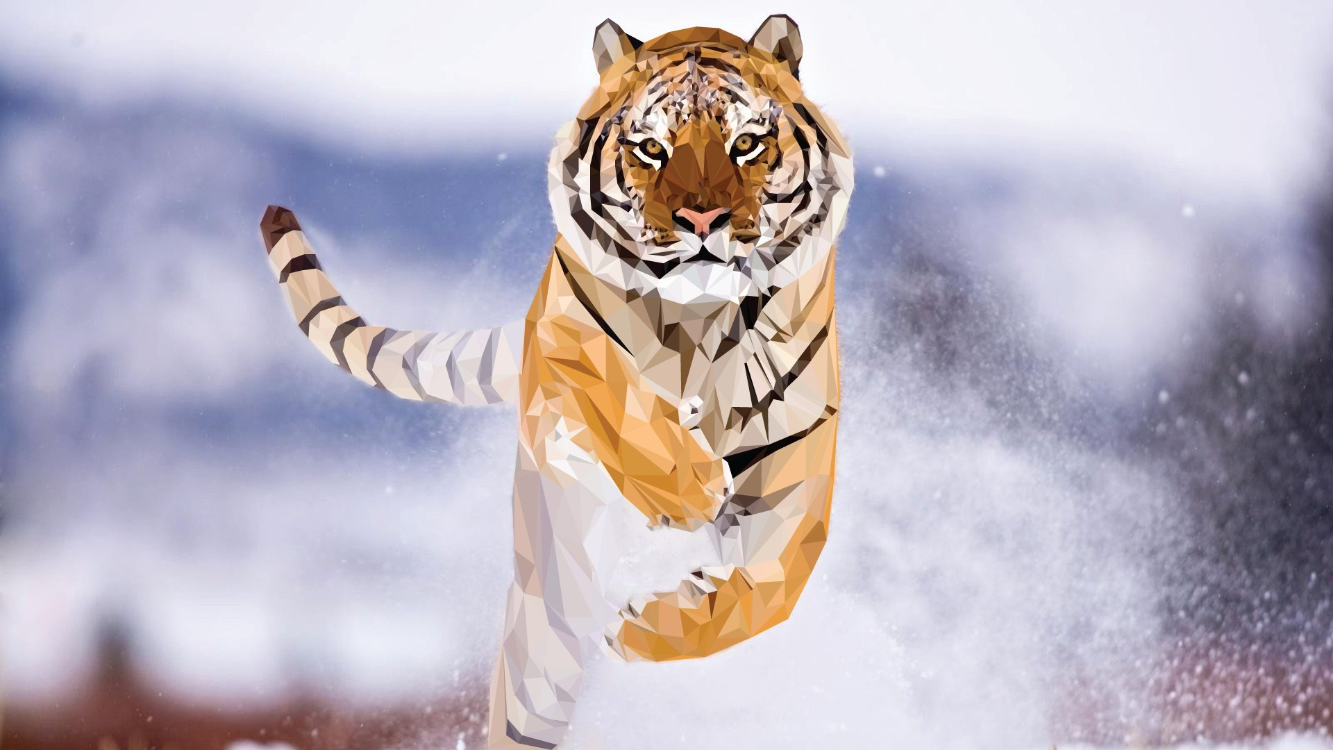 Beautiful Young Tiger ? 4K HD Desktop Wallpaper for 4K Ultra HD ...