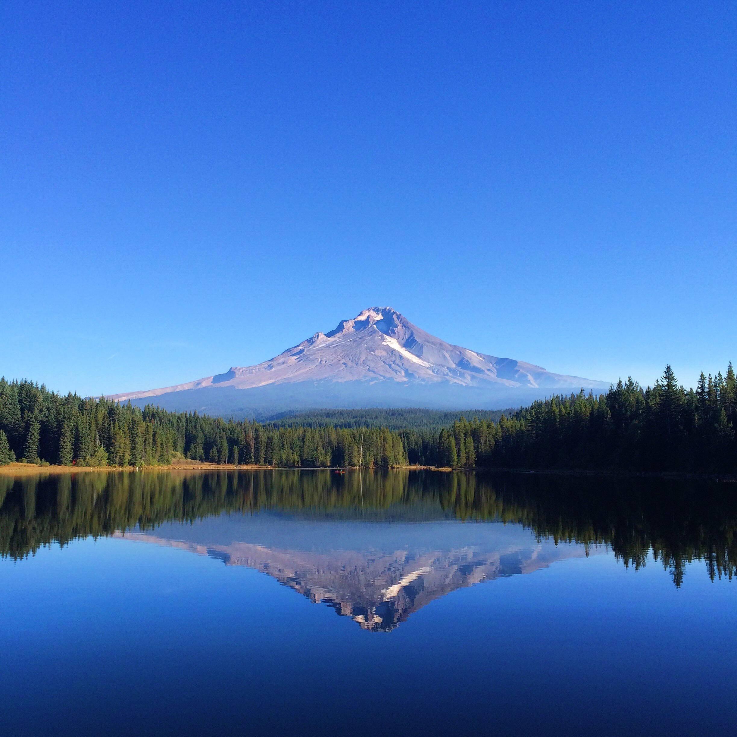 Trillium wallpapers photos and desktop backgrounds up to - Oregon nature wallpaper ...