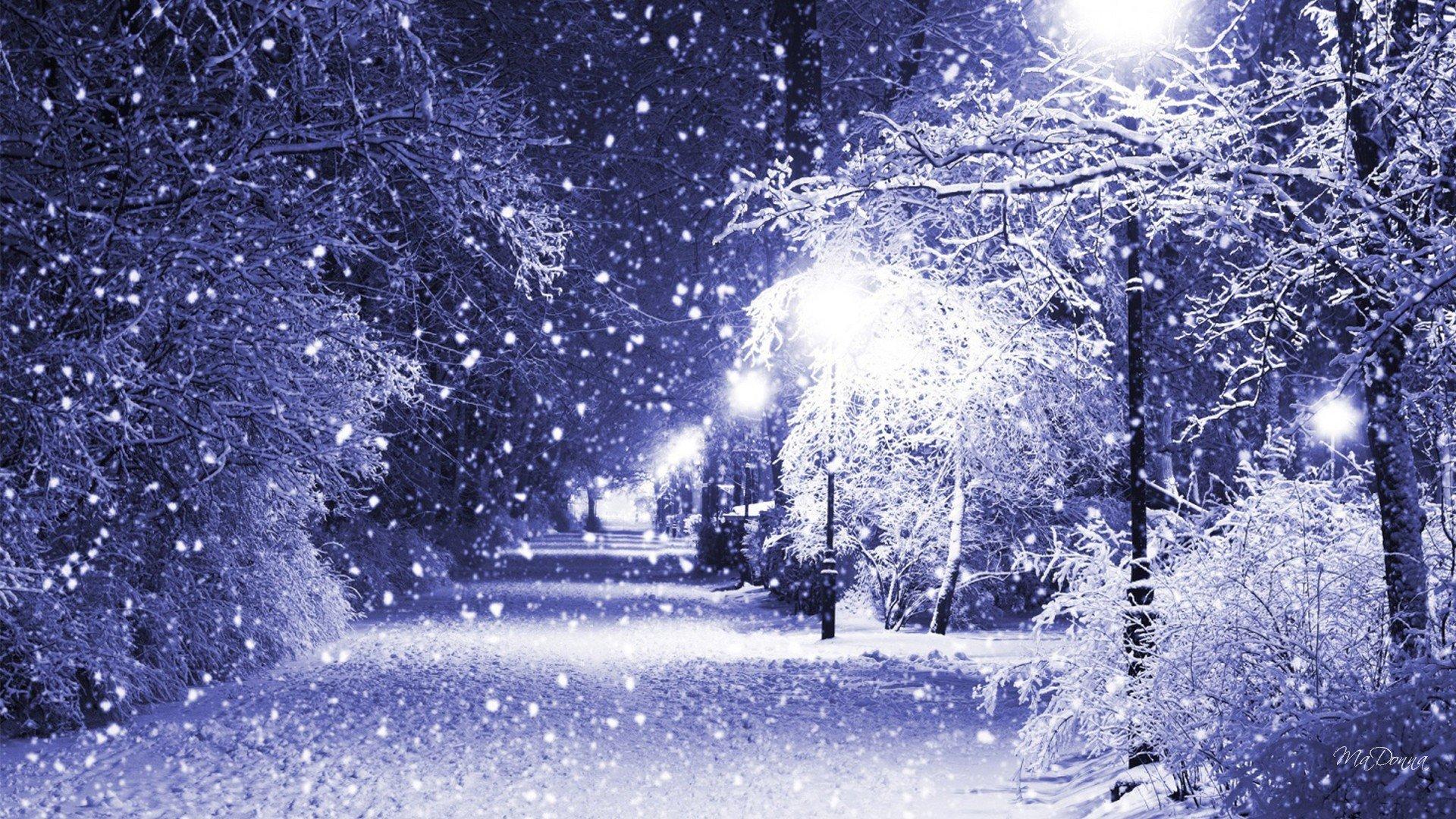 Seams to be a christmas night hd wallpaper - Christmas nature wallpaper ...