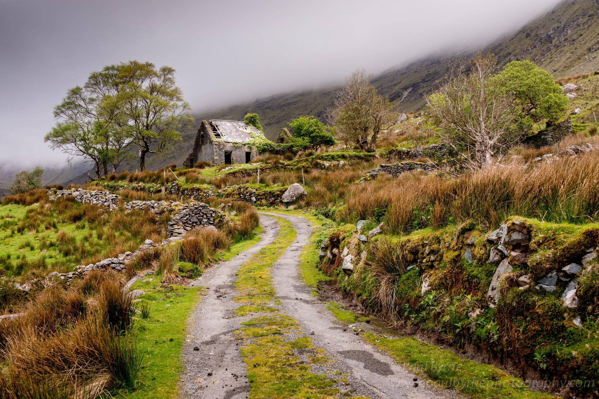 Abandoned Cottage in the Black Valley of Ireland wallpaper