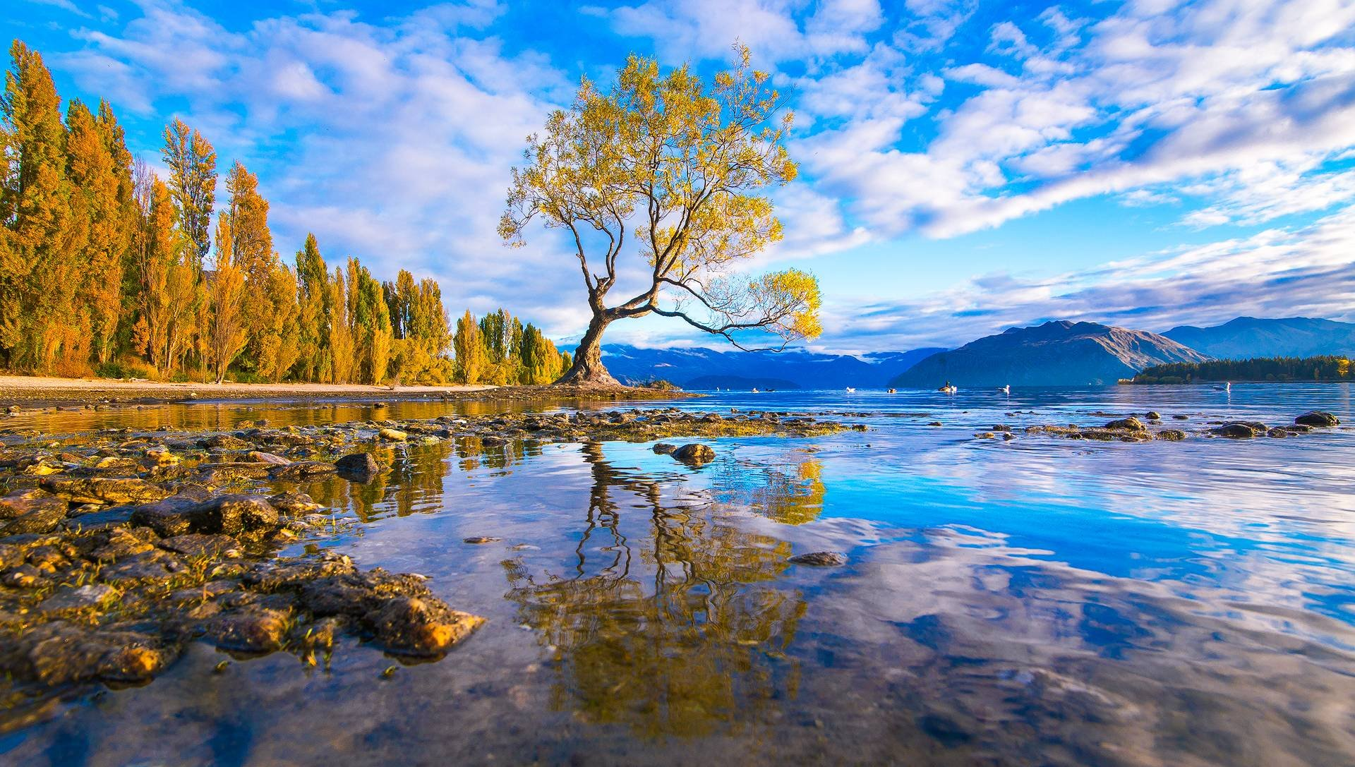 Lake Wanaka New Zealand 17167 Hd Wallpaper