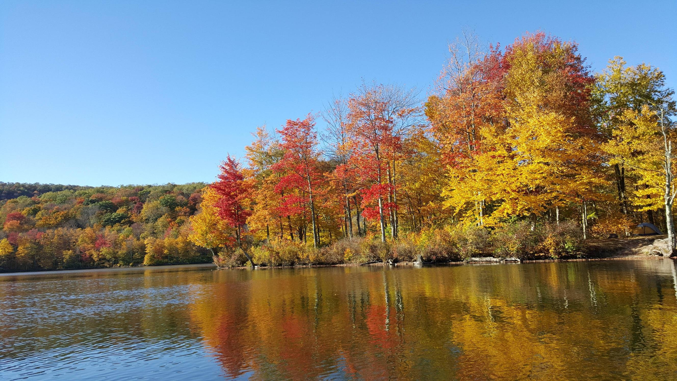 Fall Foliage on the Lake Upstate New York by Dwells wallpaper