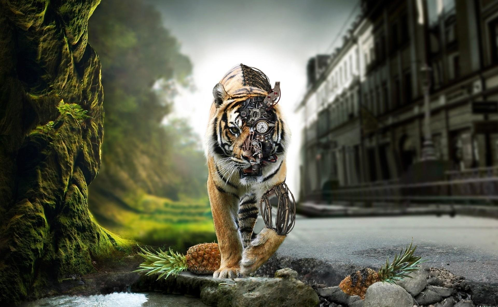 Bloody Tiger High Quality Hd Wallpaper