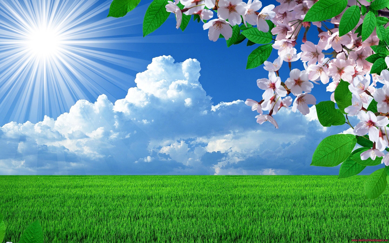 Beautiful Nature Hd 17436 HD wallpaper