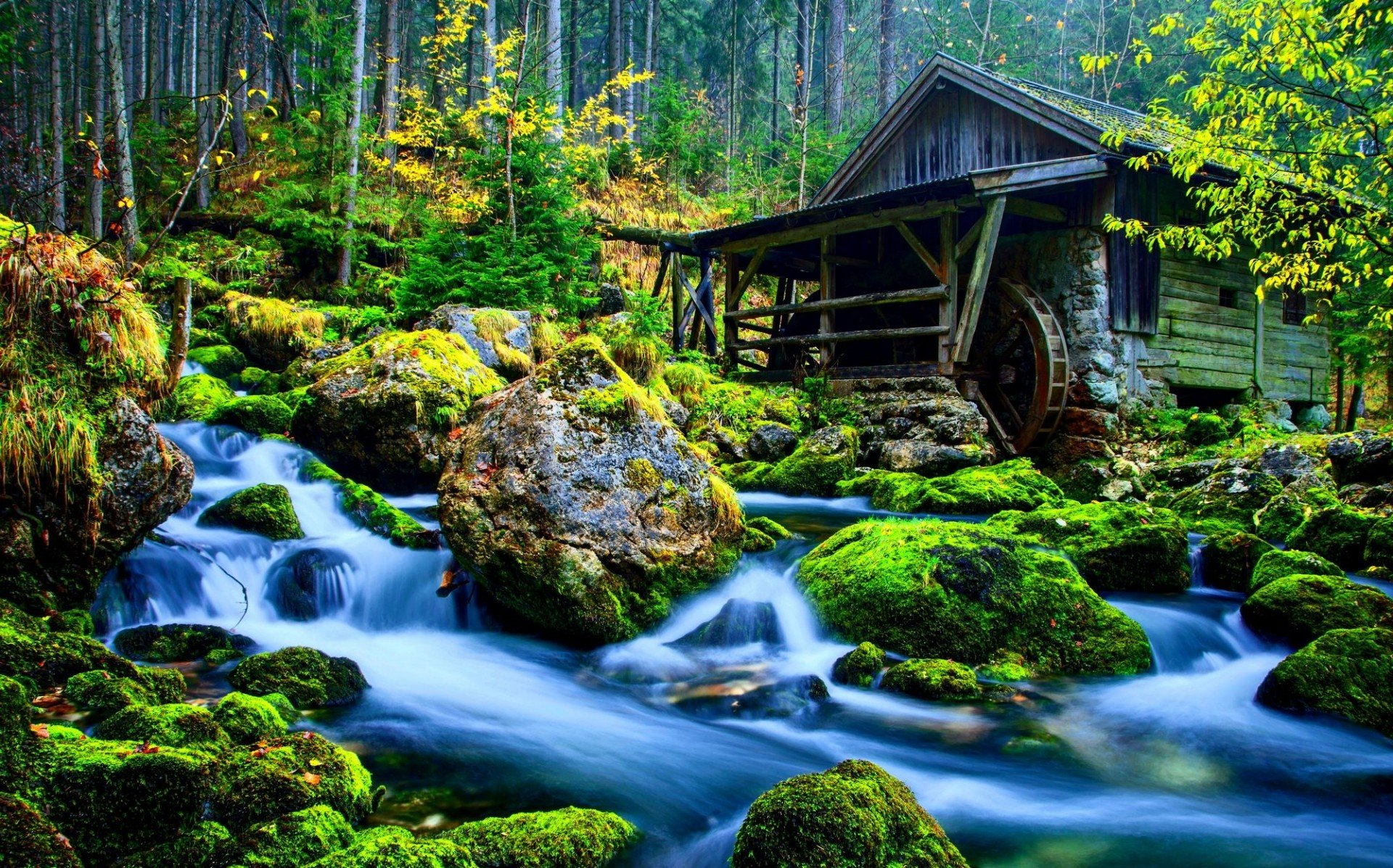 Beautiful house in nature hd wallpaper for Beautiful house hd photo