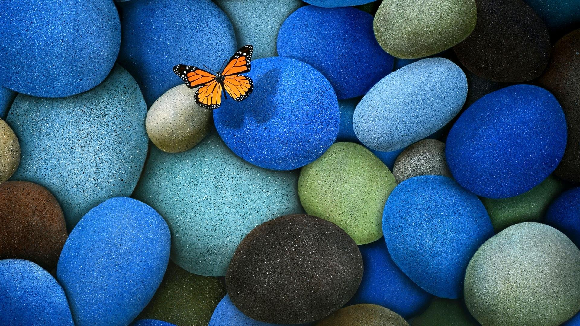 Butterfly On Colourful Stones wallpaper