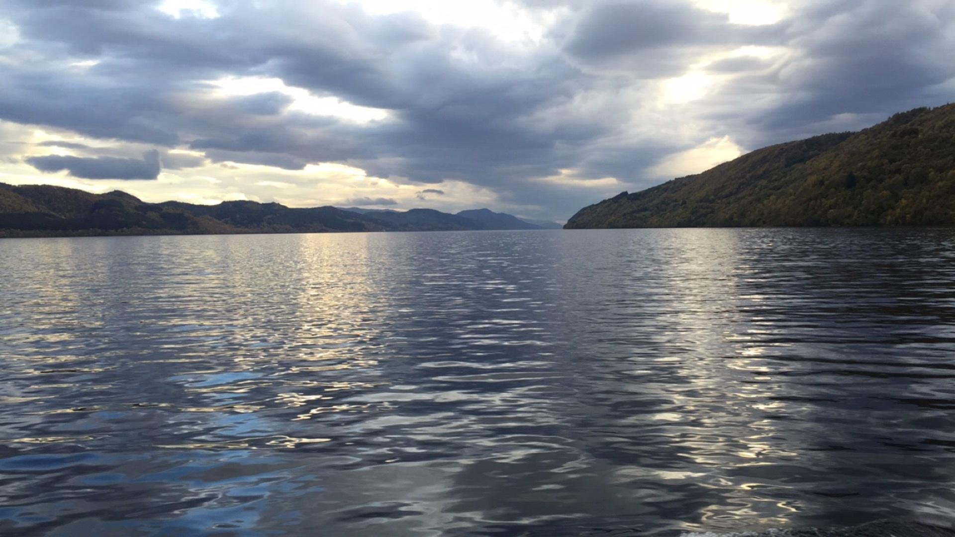download Why Males Exist, An Inquiry into the