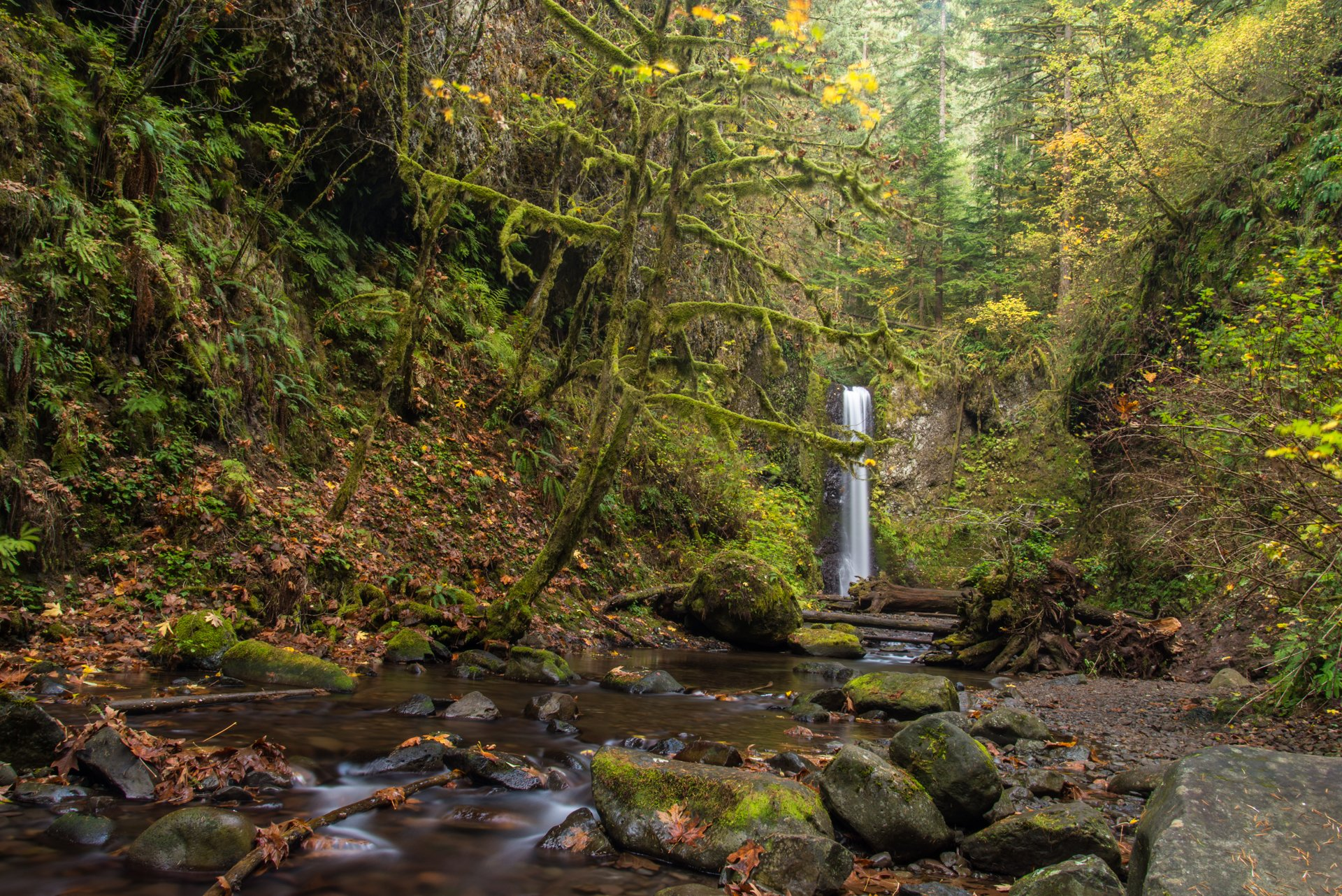 Nature Wallpaper Waterfall Columbia River Oregon: Gorge Wallpapers, Photos And Desktop Backgrounds Up To 8K