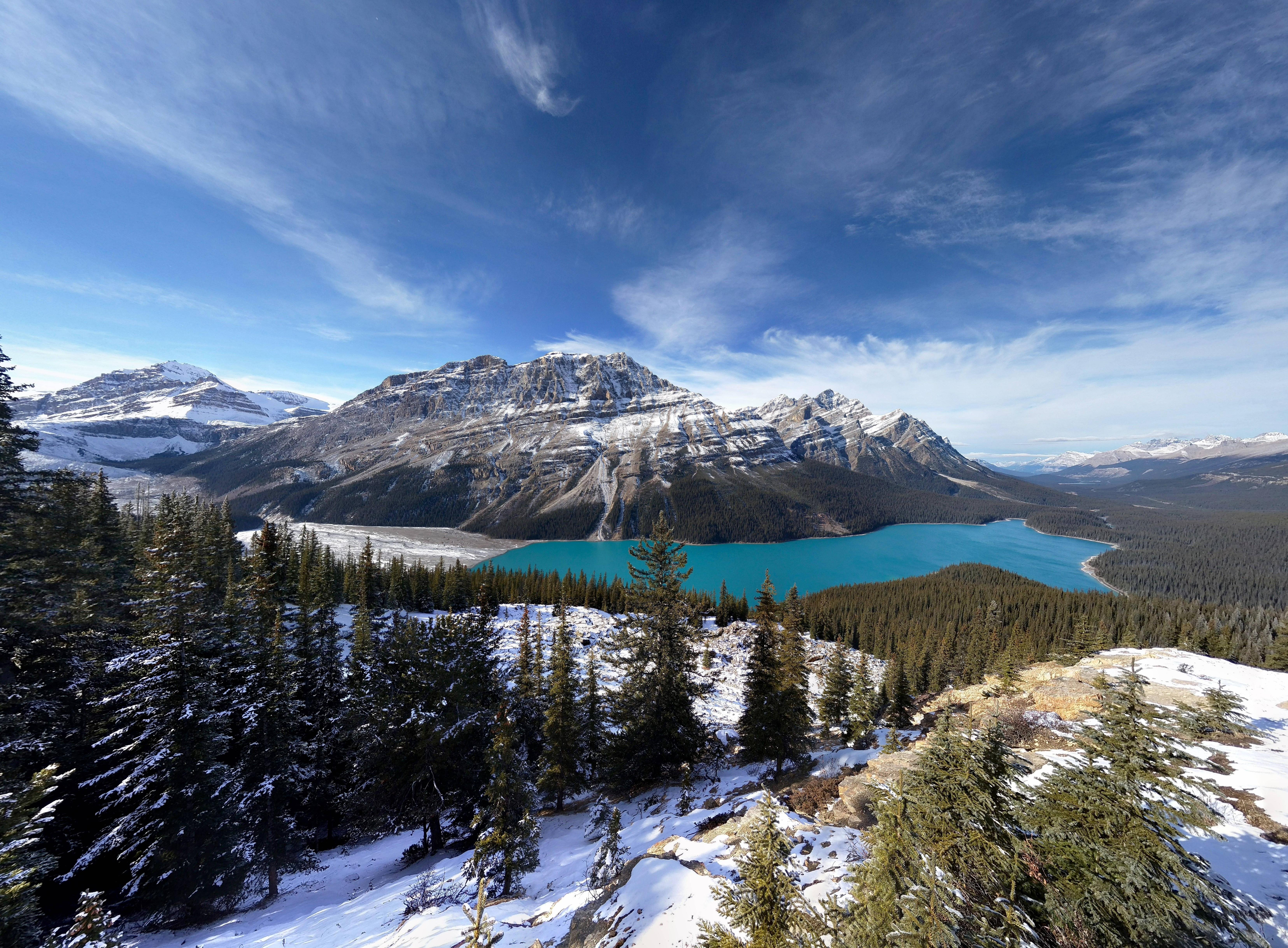 Peyto Lake Alberta wallpaper