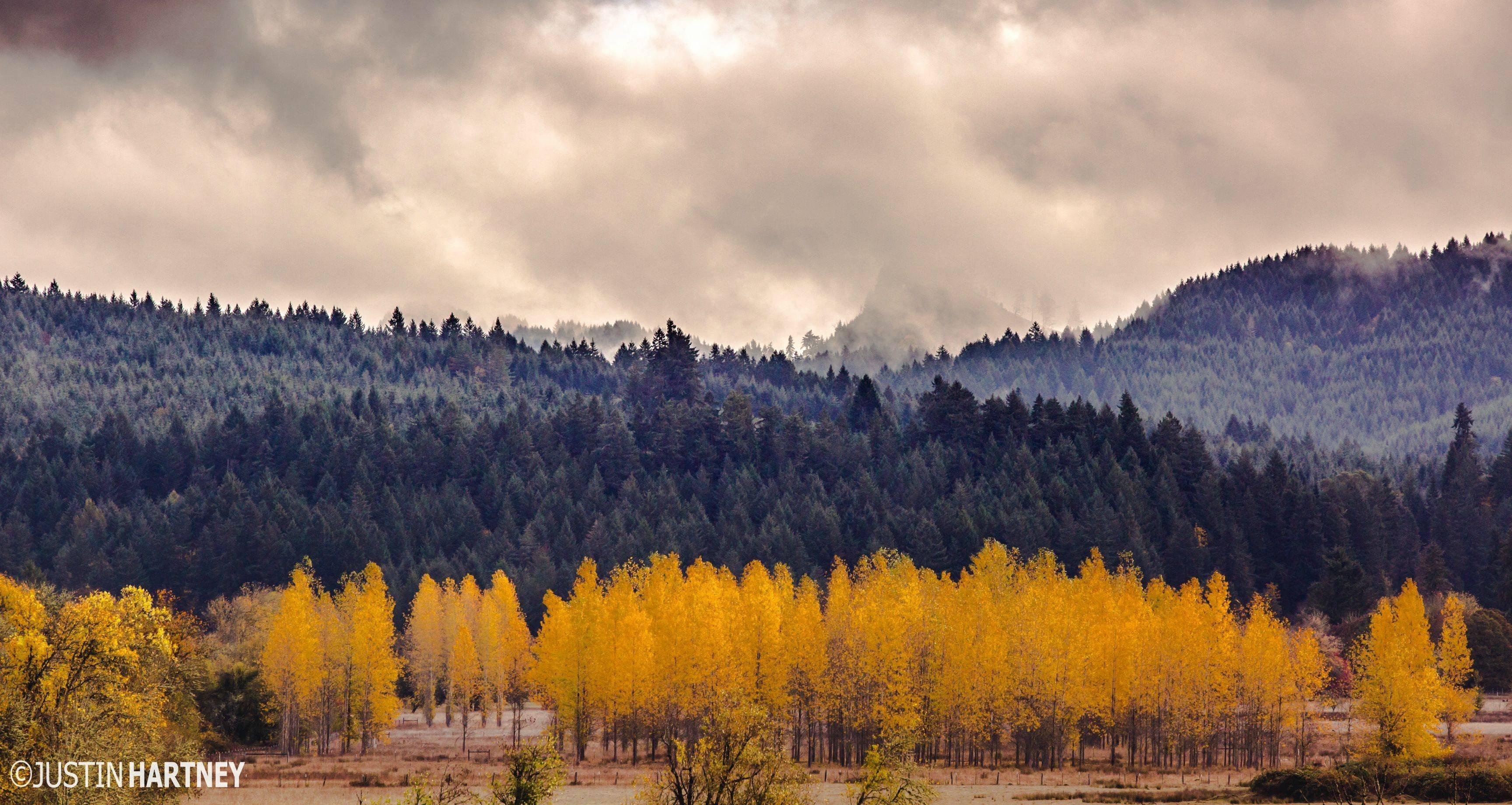 Lorane oregon 19809 hd wallpaper - Oregon nature wallpaper ...