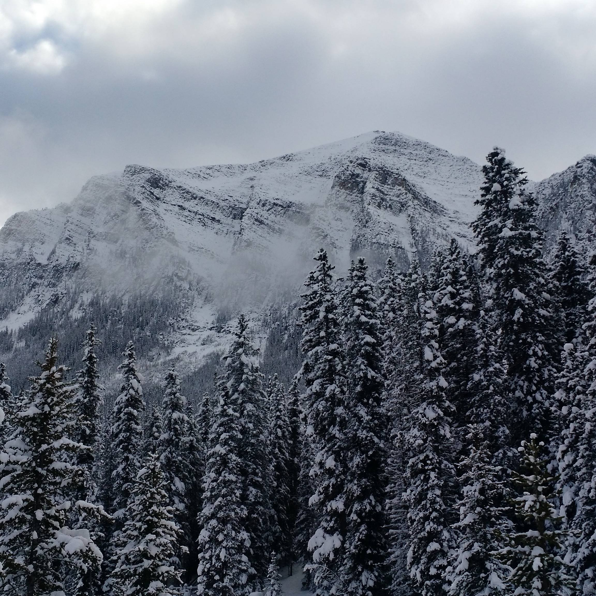 Banff National Park in the Winter wallpaper
