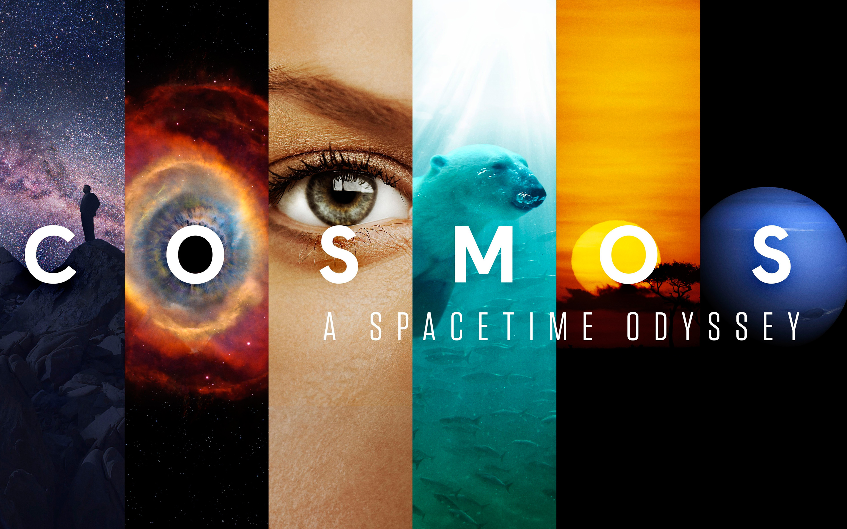 Cosmos A SpaceTime Odyssey wallpaper