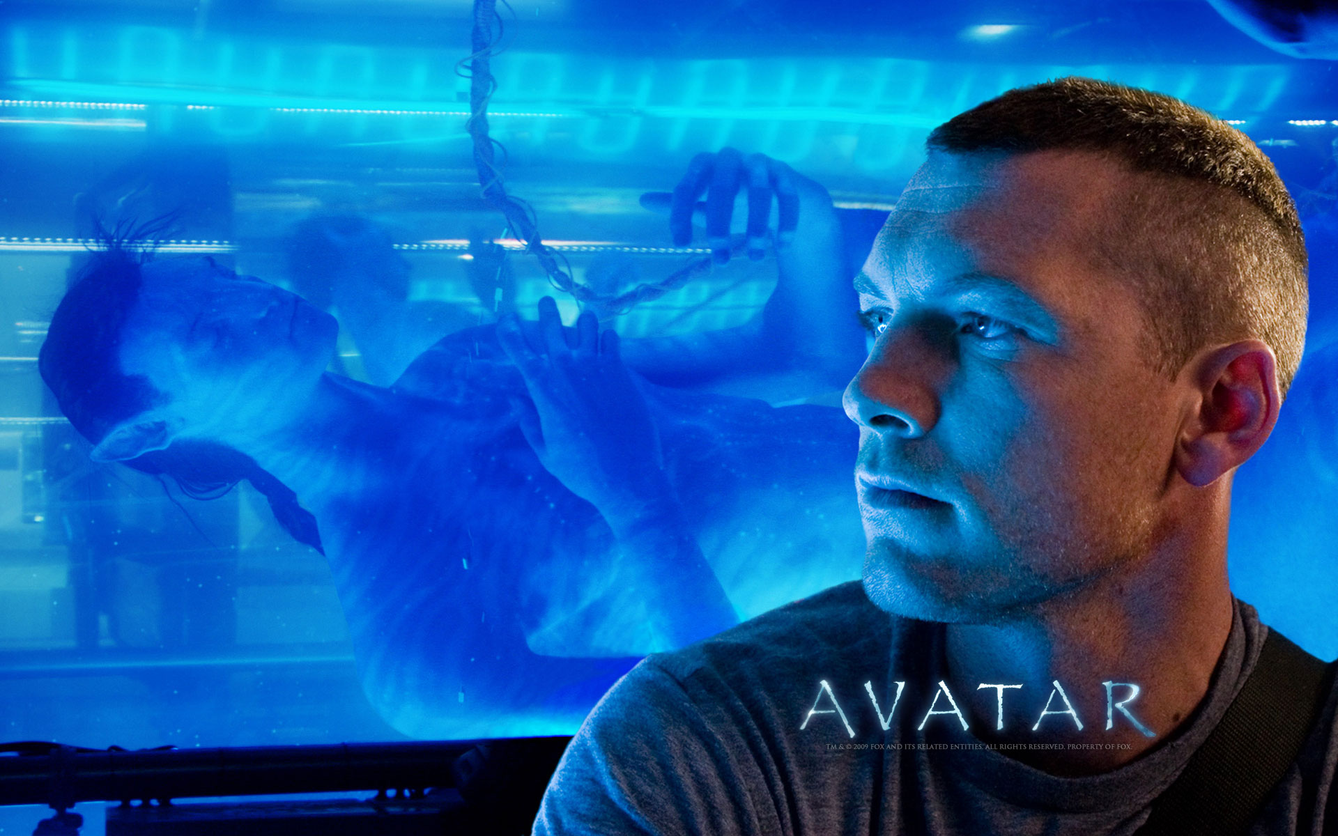 avatar wallpapers photos and desktop backgrounds up to 8k