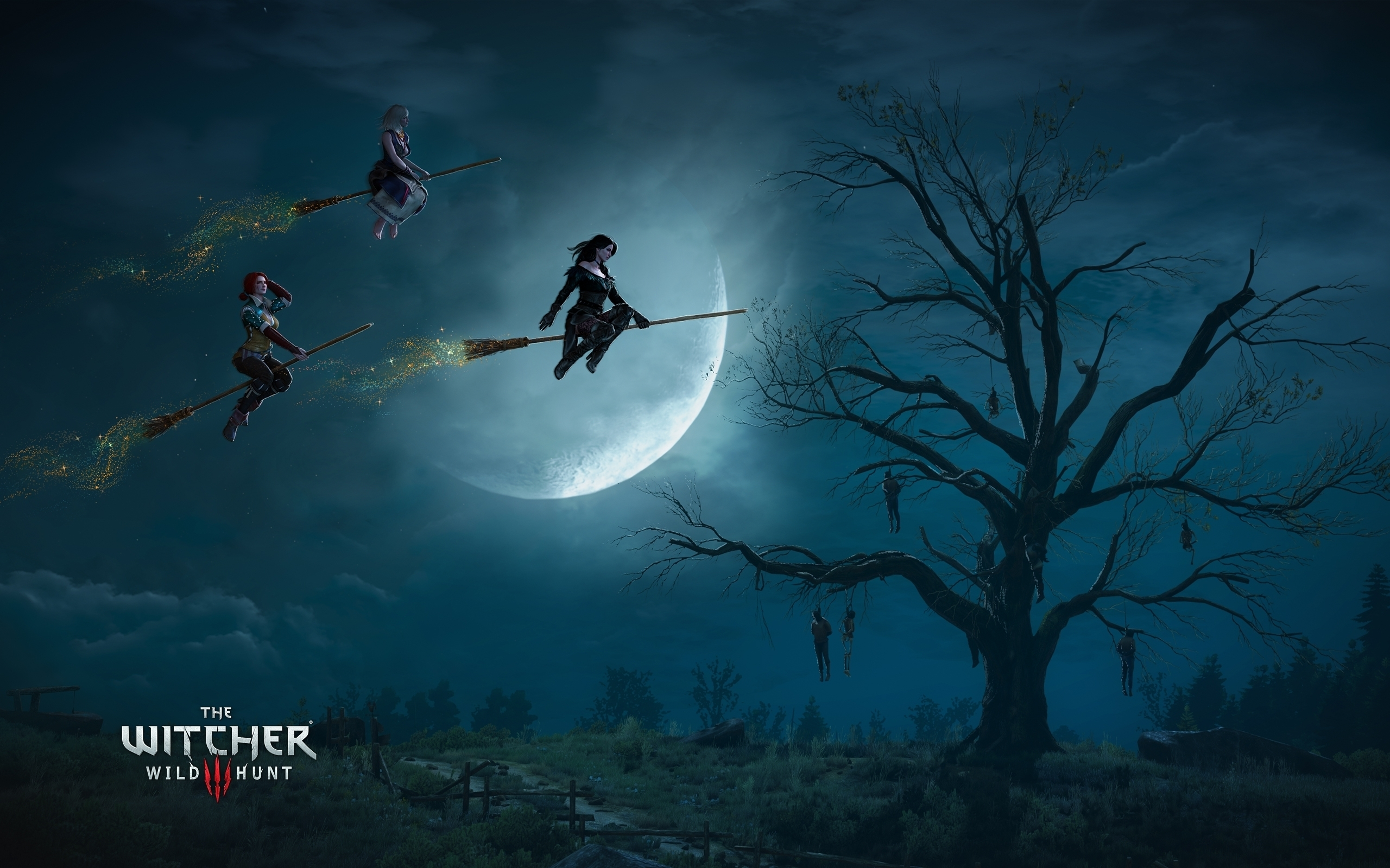 The Witcher Wild Hunt Witches wallpaper