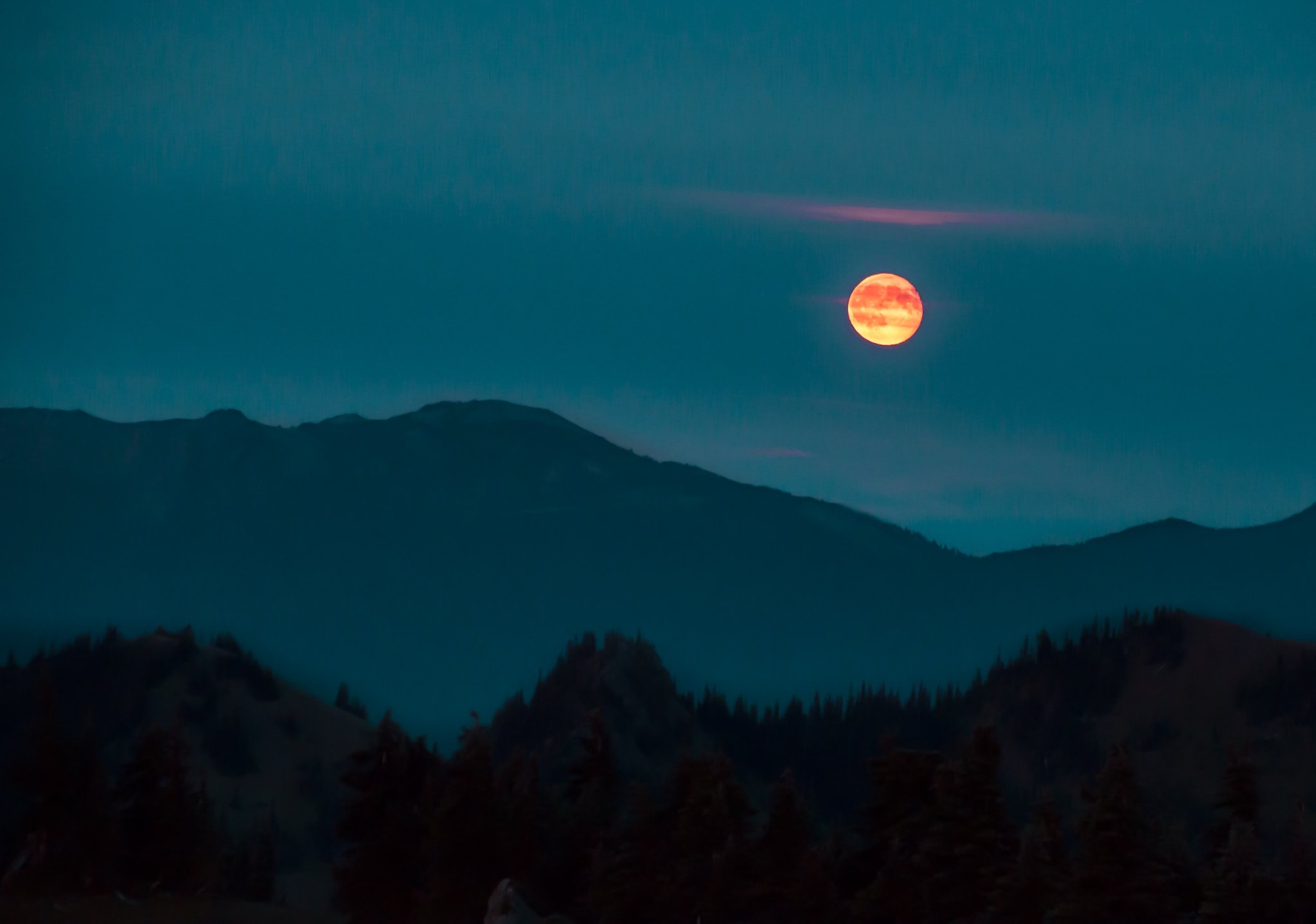 Once in a Red Moon Olympic National Park wallpaper