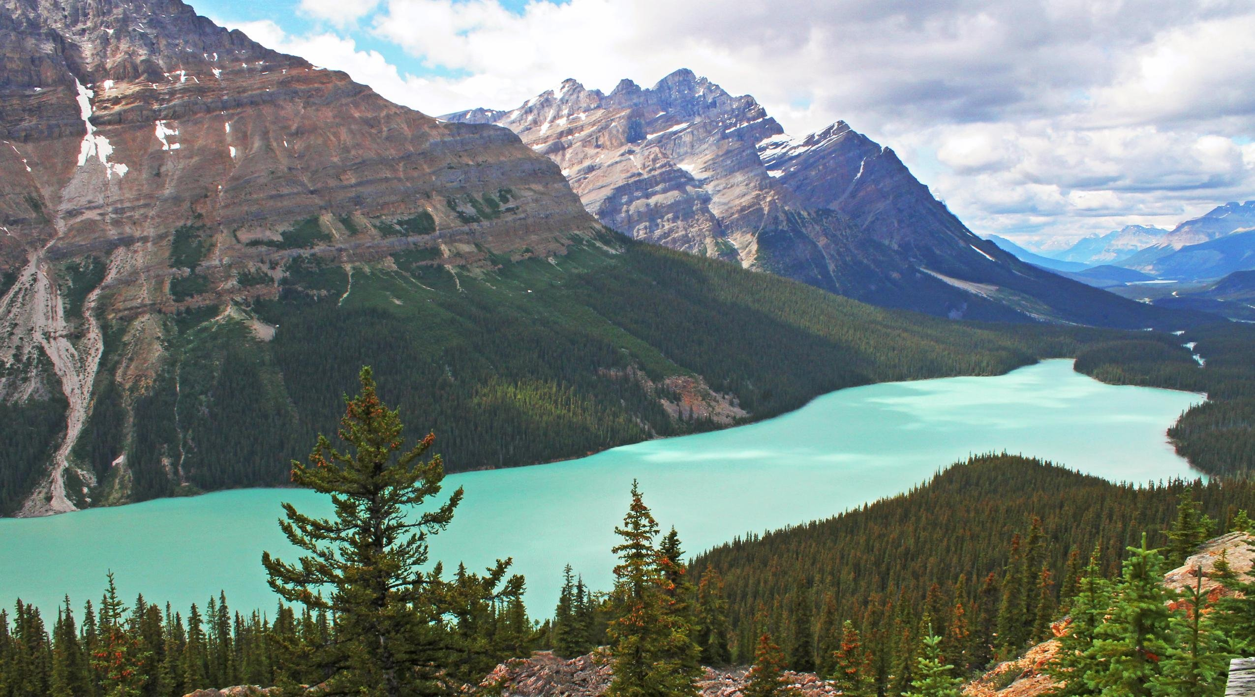 Peyto Lake wallpaper