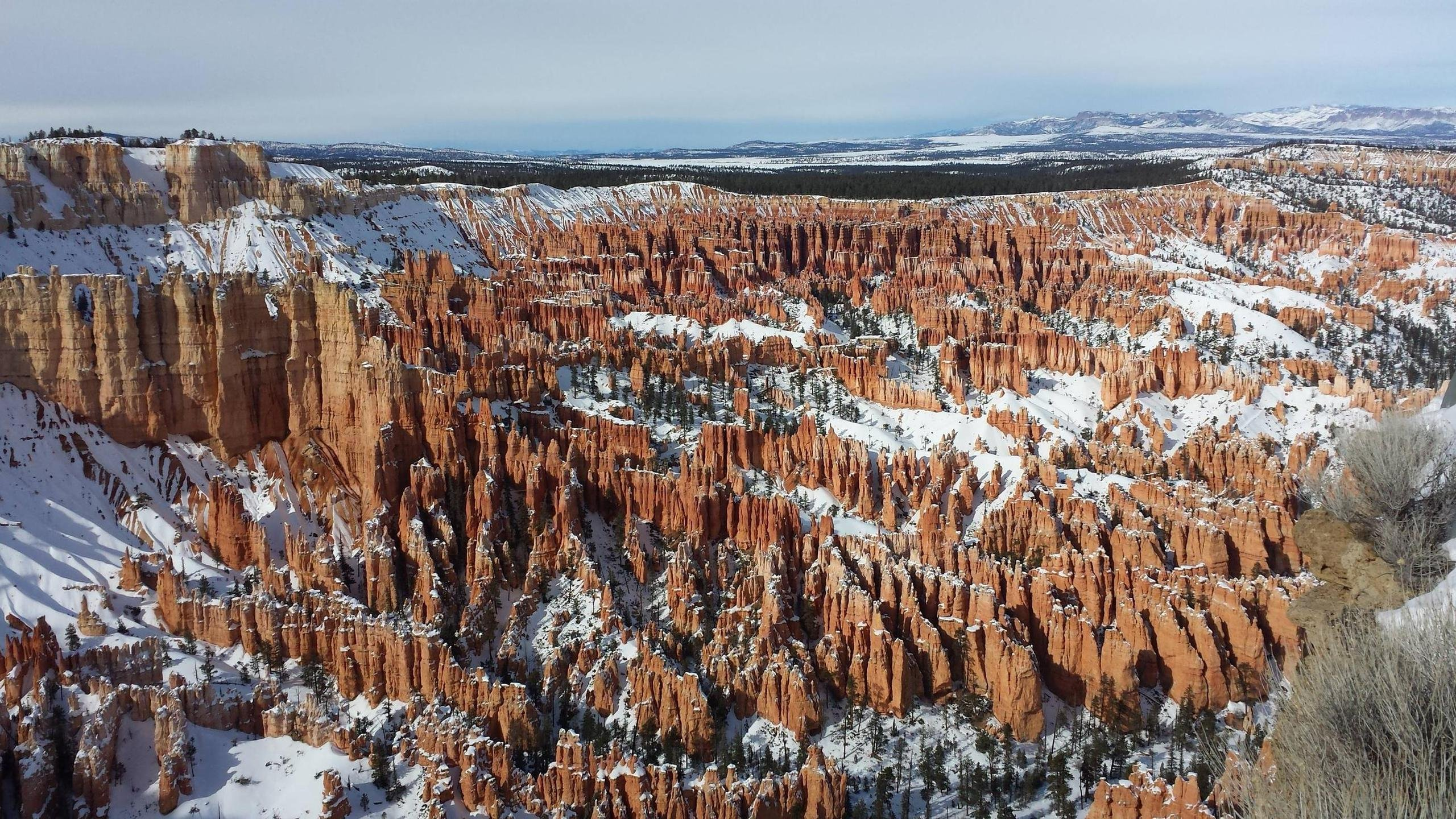 Amphitheater From Bryce Point in Bryce Canyon UT wallpaper