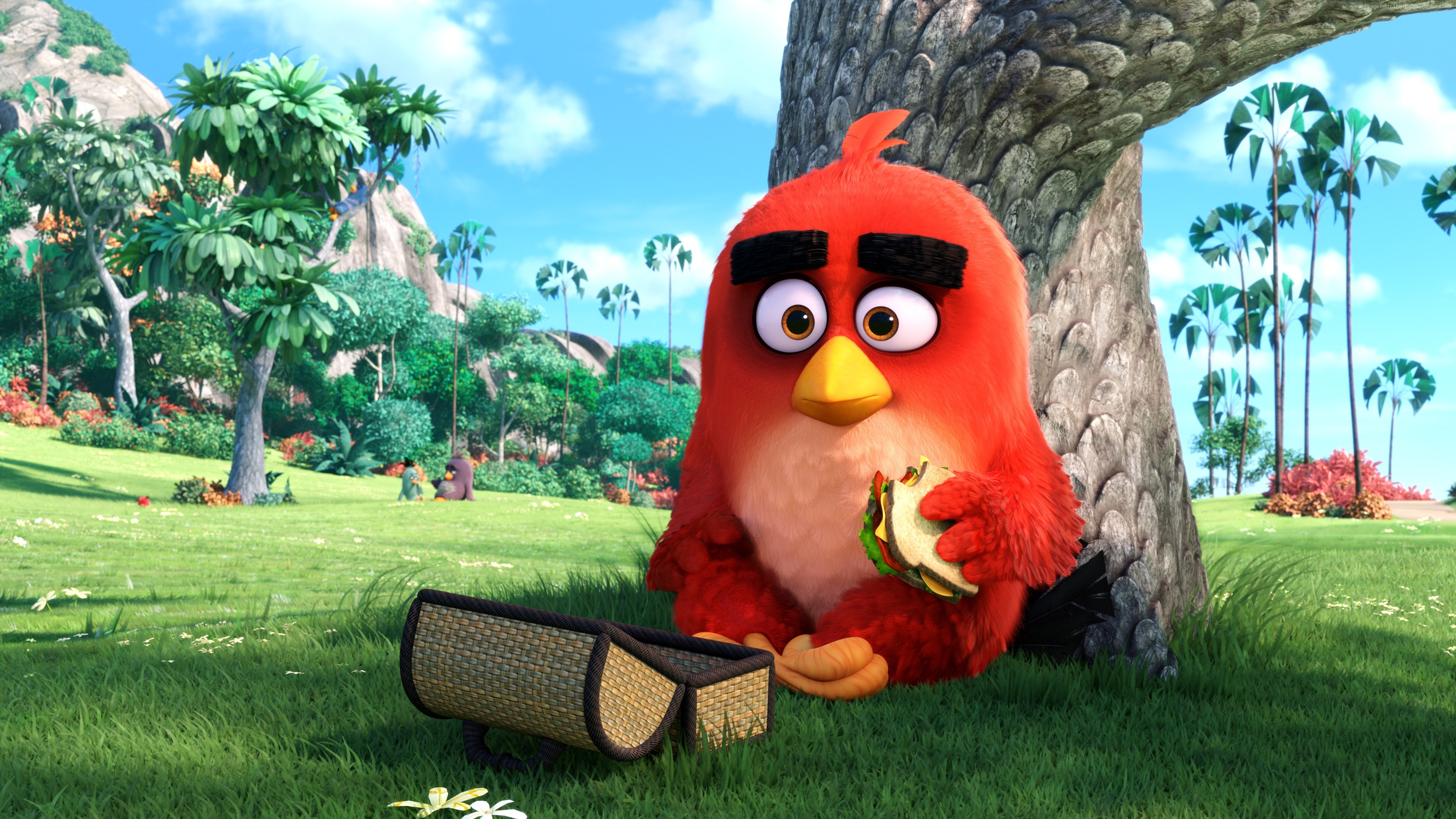 RED Angry Birds Movie wallpaper