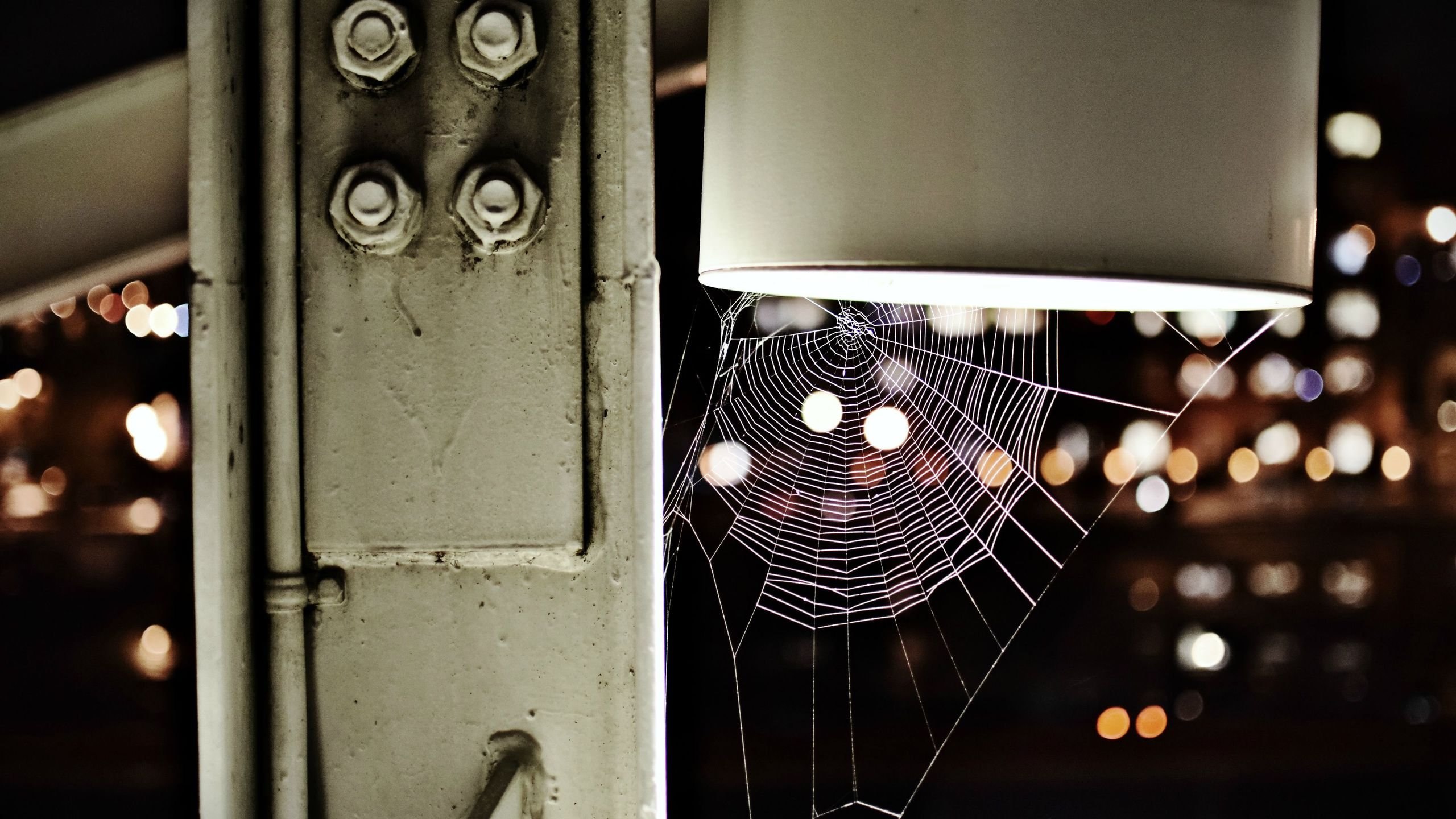 Abandoned Spiderweb wallpaper