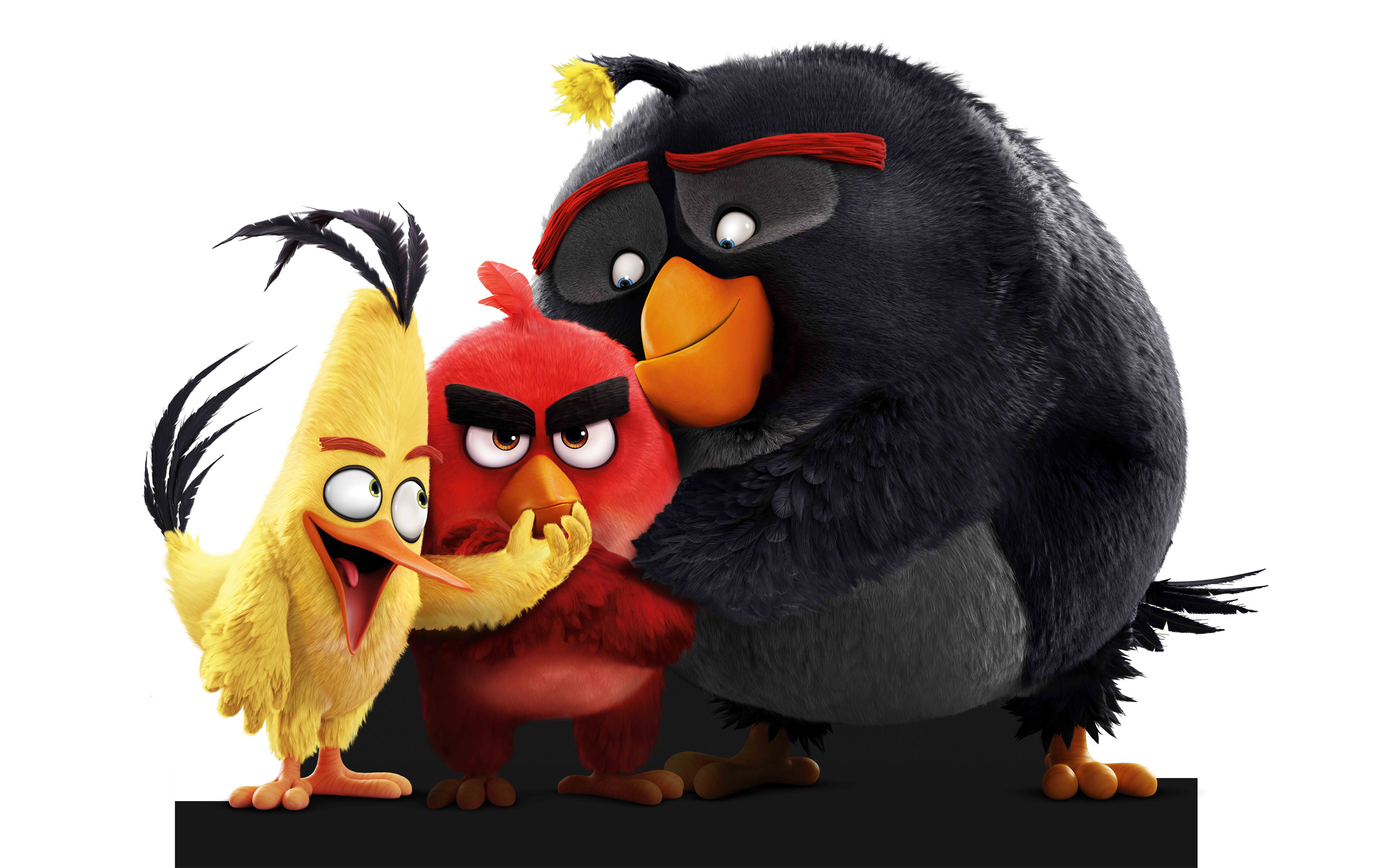 Angry Birds Movie 2016 wallpaper