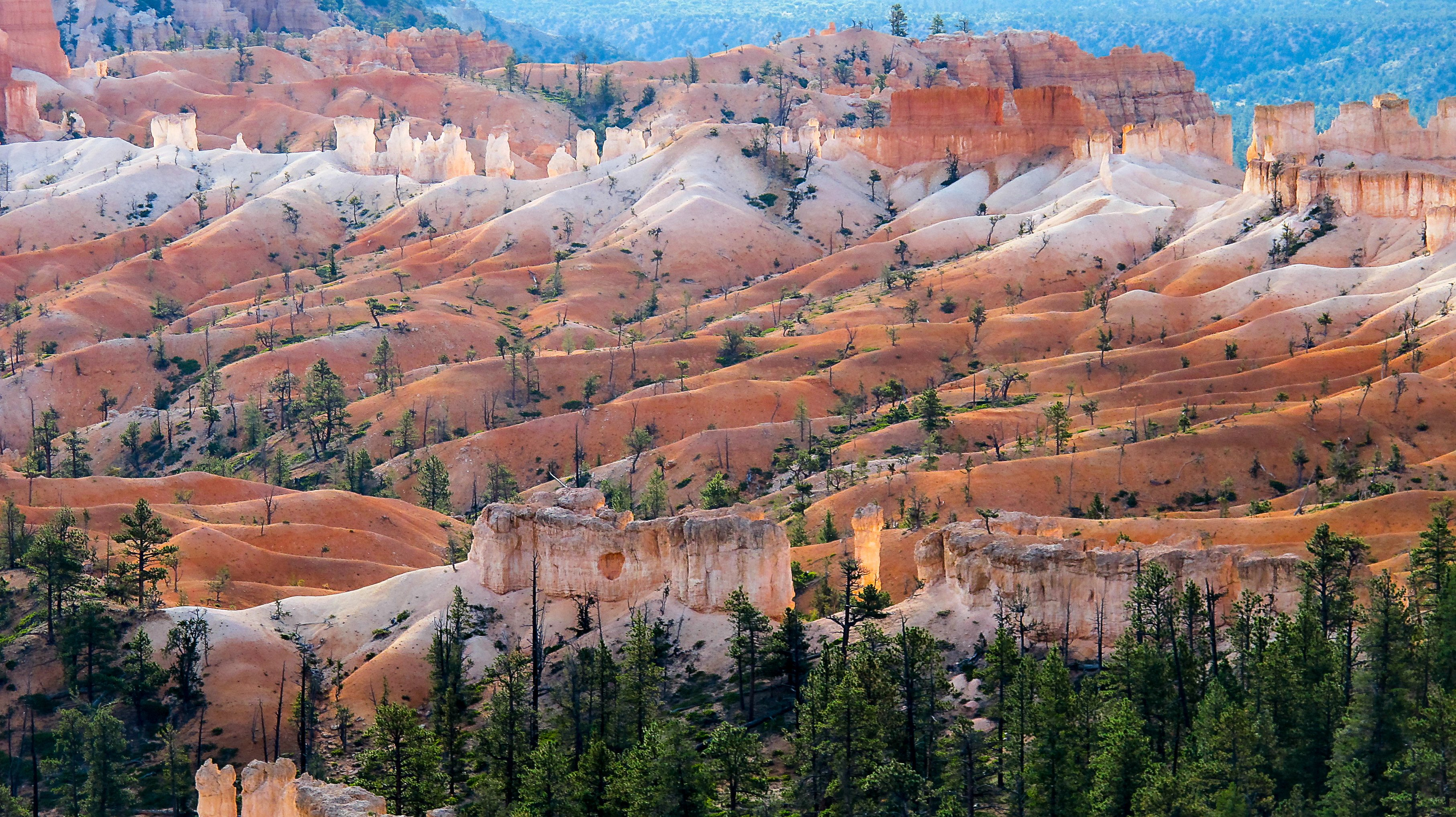 Bryce Canyon Fairyland Loop Trail wallpaper