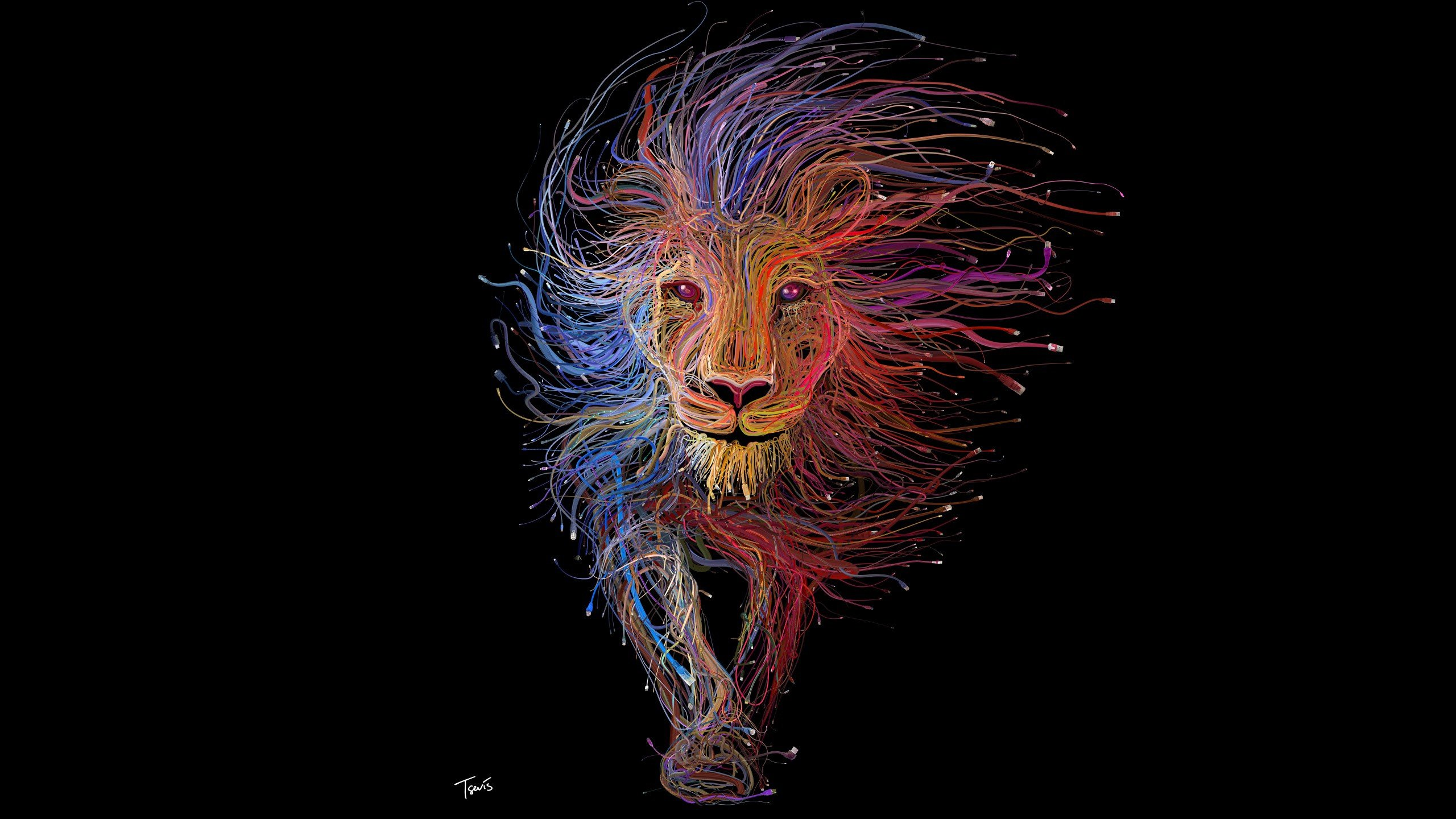 lion wallpaper. colourful cables lion wallpaper r