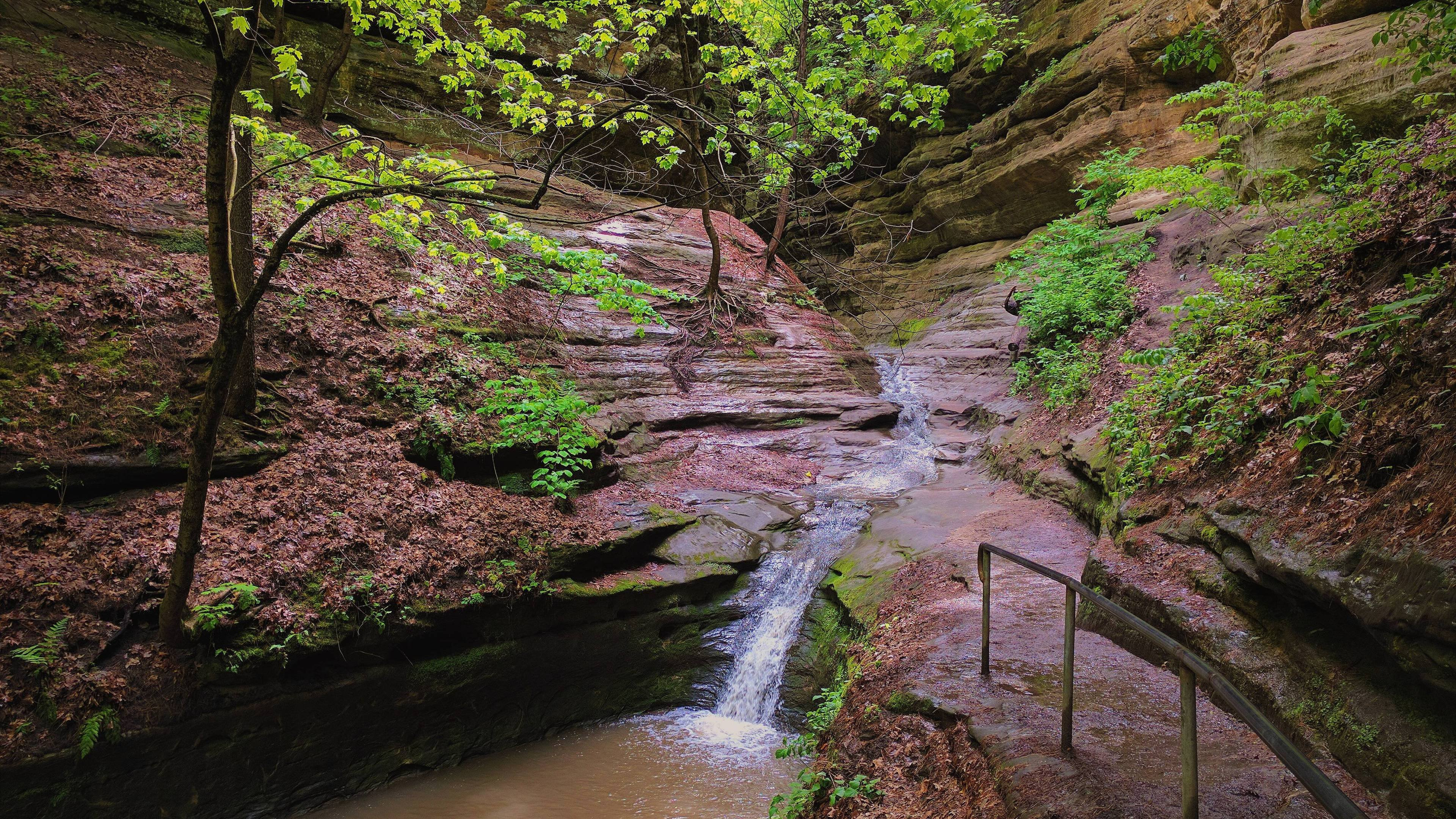 Starved Rock State Park Illinois USA wallpaper