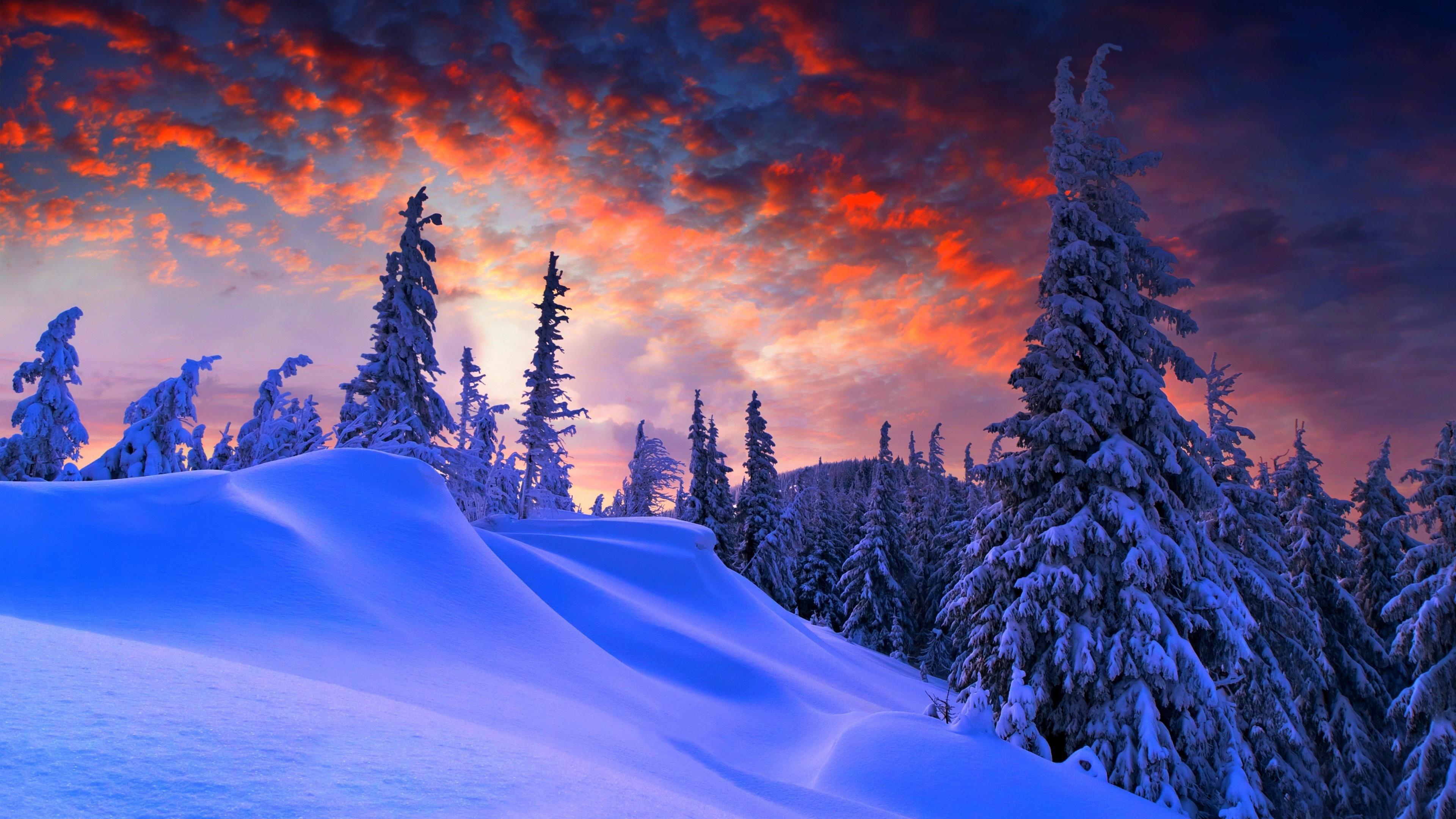 Christmas Wallpaper 4k.Winter Christmas 4k Wallpaper