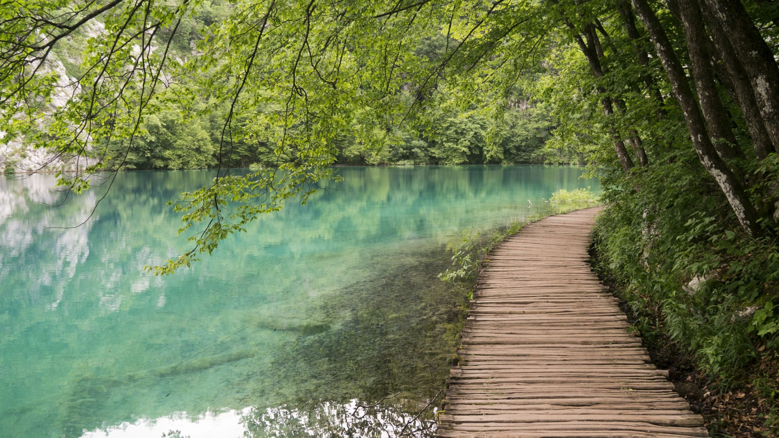 Wooden Path by the Lake at Plitvice Lakes National Park Croatia wallpaper