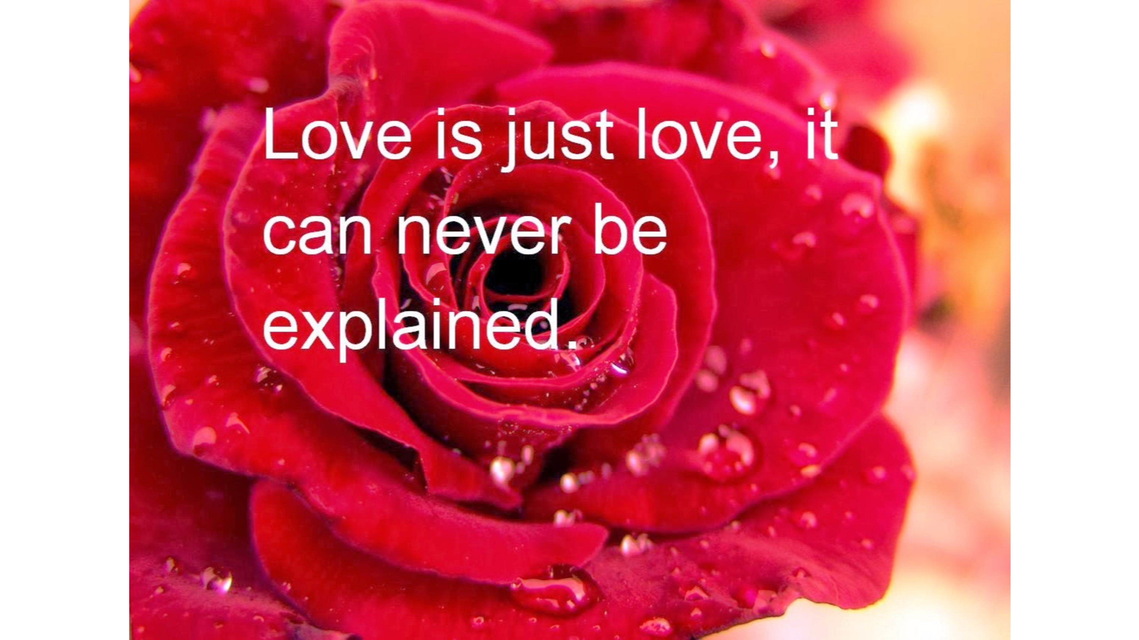 Unexplainable Love Quote 4K wallpaper
