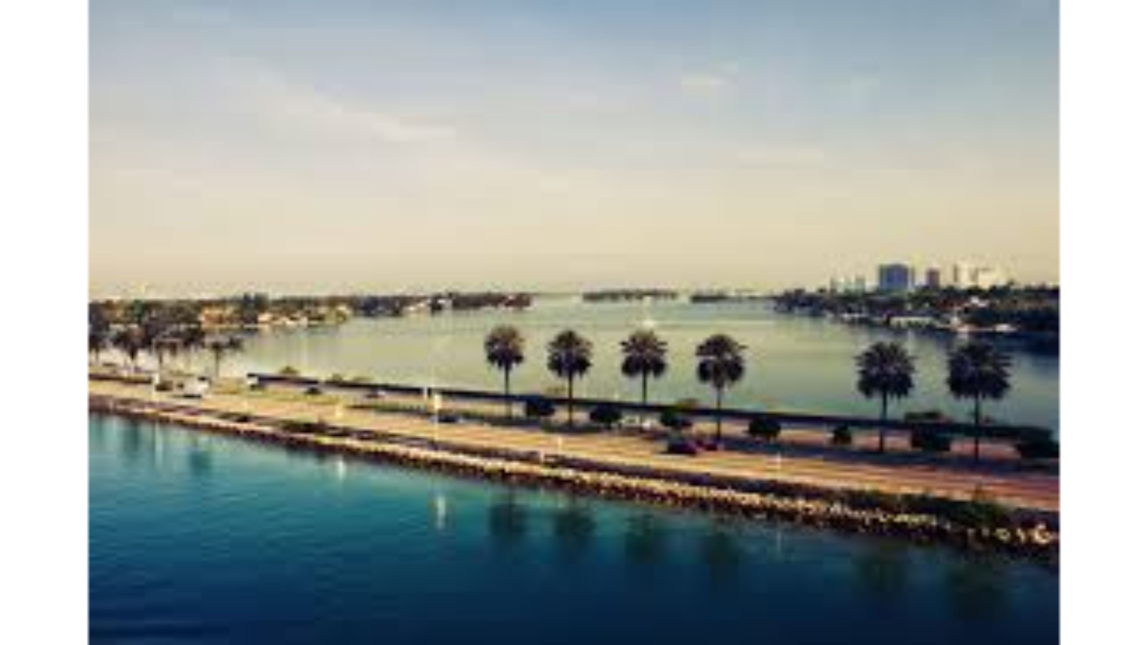 visit florida essay Visit florida® is the official florida tourism industry marketing corporation the content for this web site has been provided both by professional travel writers.