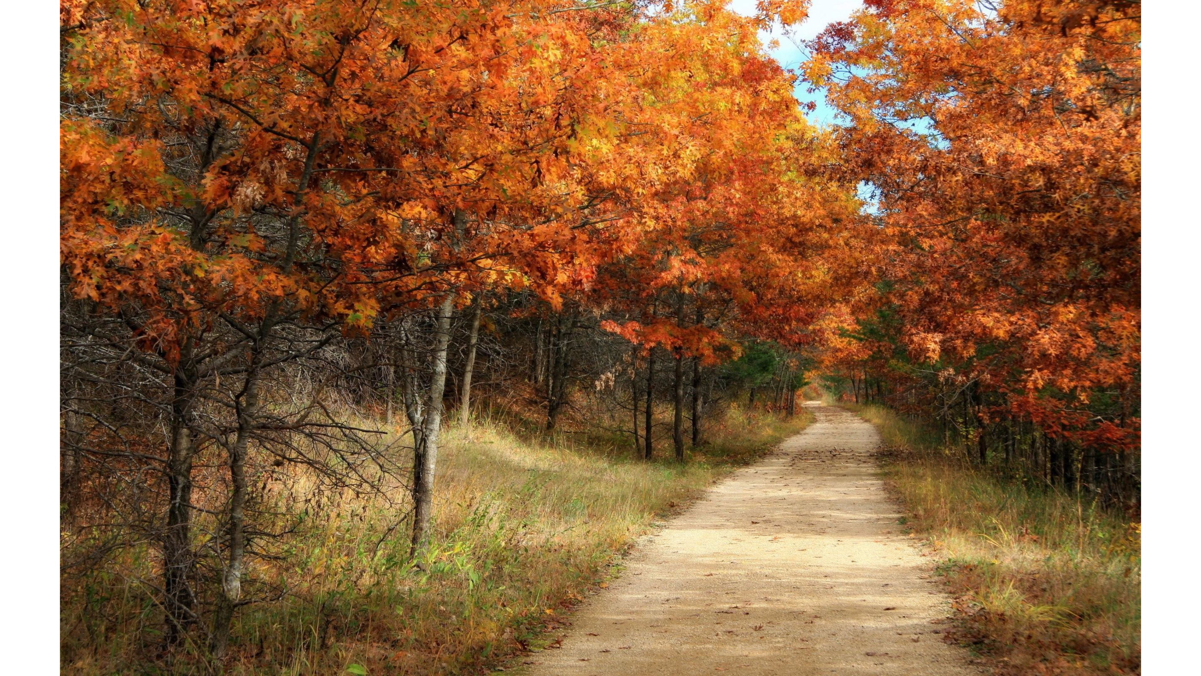 vintage fall backgrounds with - photo #6